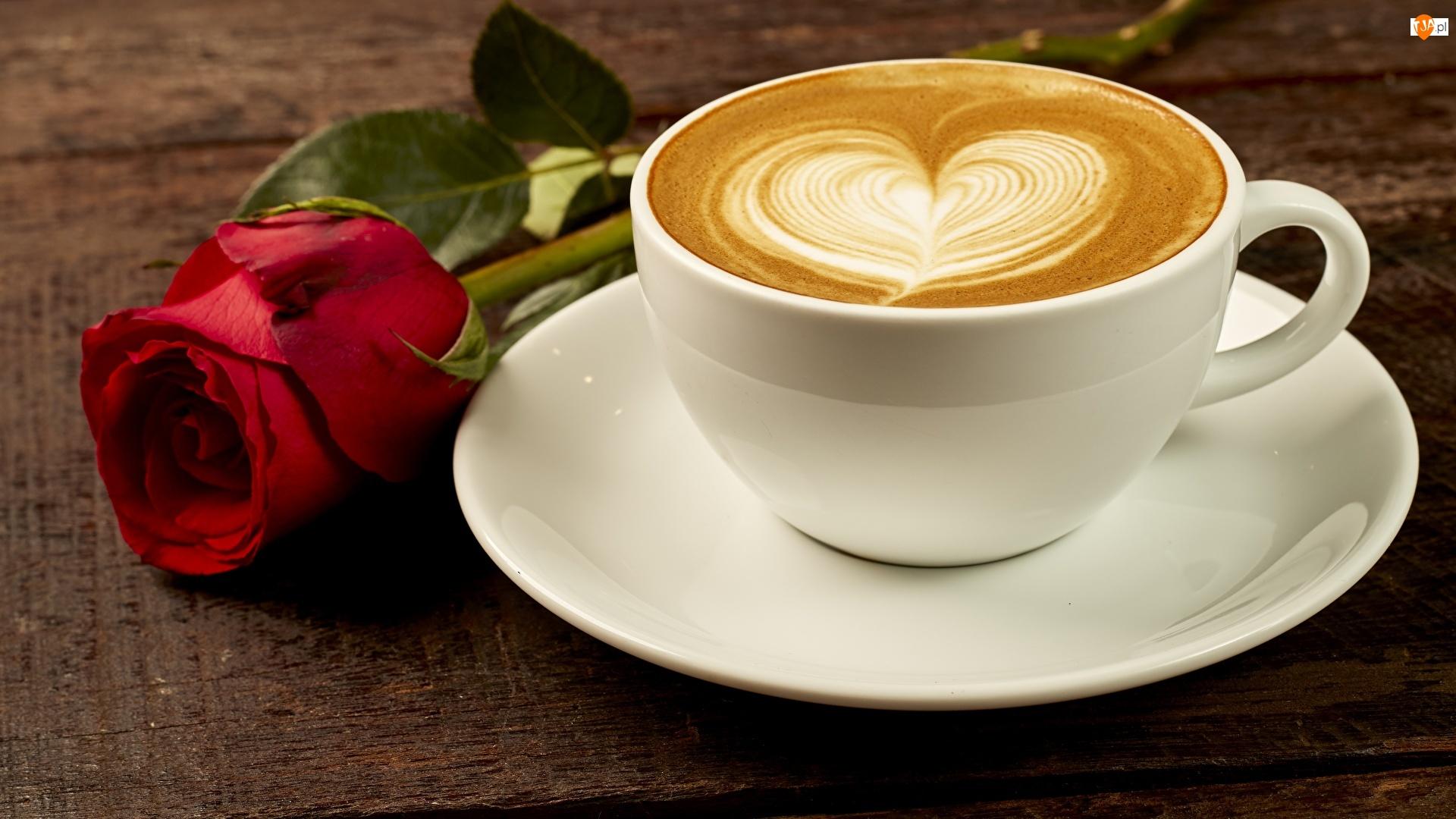 Cappuccino, Kawa, Spodek, Róża, Filiżanka, Czerwona