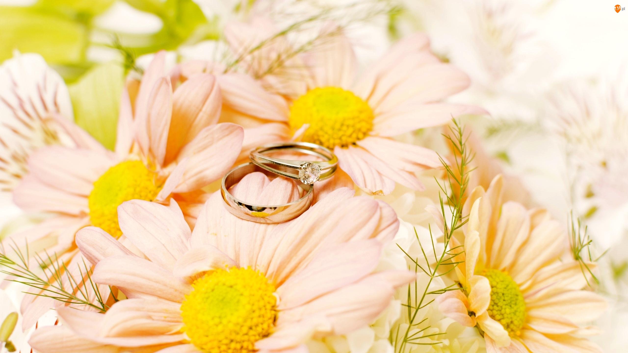 Pierścionek, Kwiaty, Miłosne, Obrączka