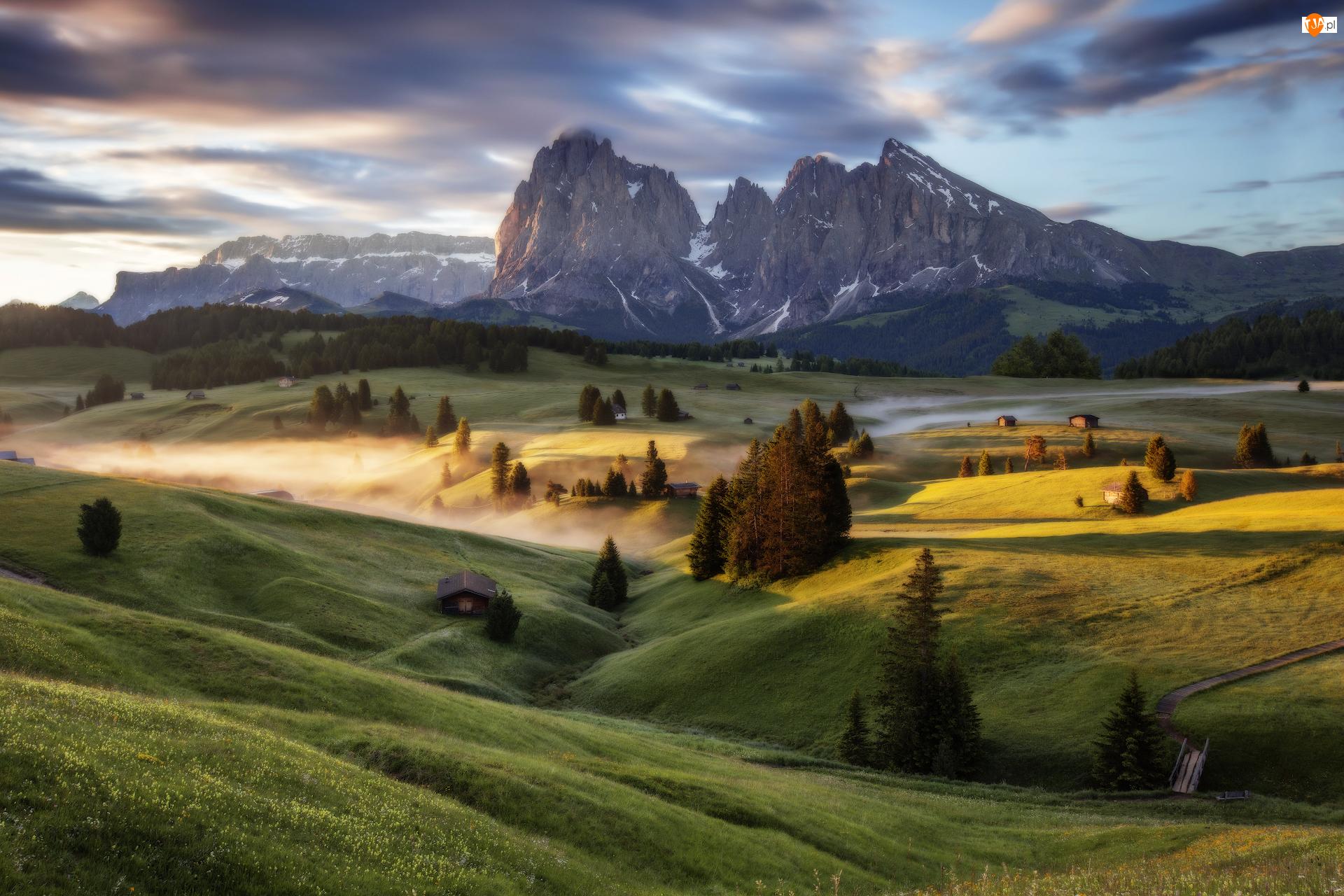 Dolomity, Wzgórza, Dolina Val Gardena, Płaskowyż Seiser Alm, Mgła, Góry Sassolungo, Włochy, Drzewa