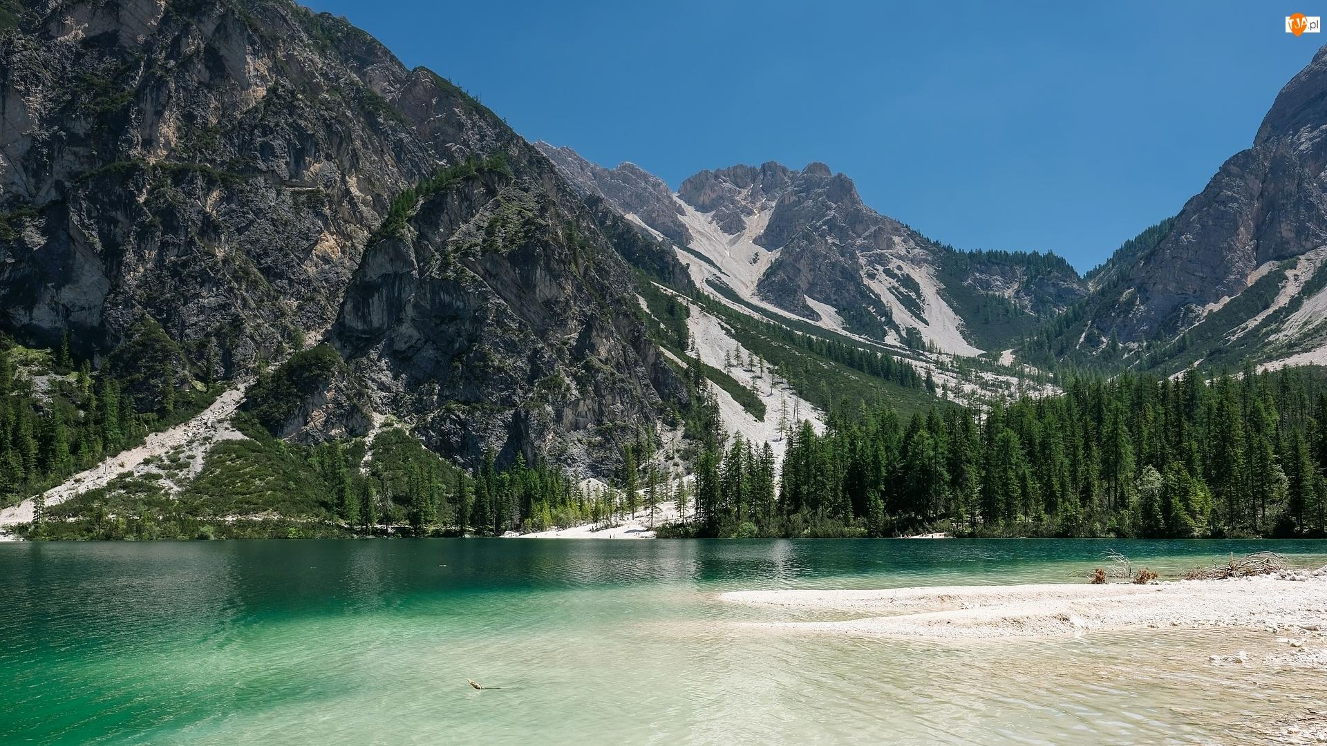Dolomity, Drzewa, Włochy, Góry, Dolina Val Pusteria, Lago di Braies, Jezioro Pragser Wildsee