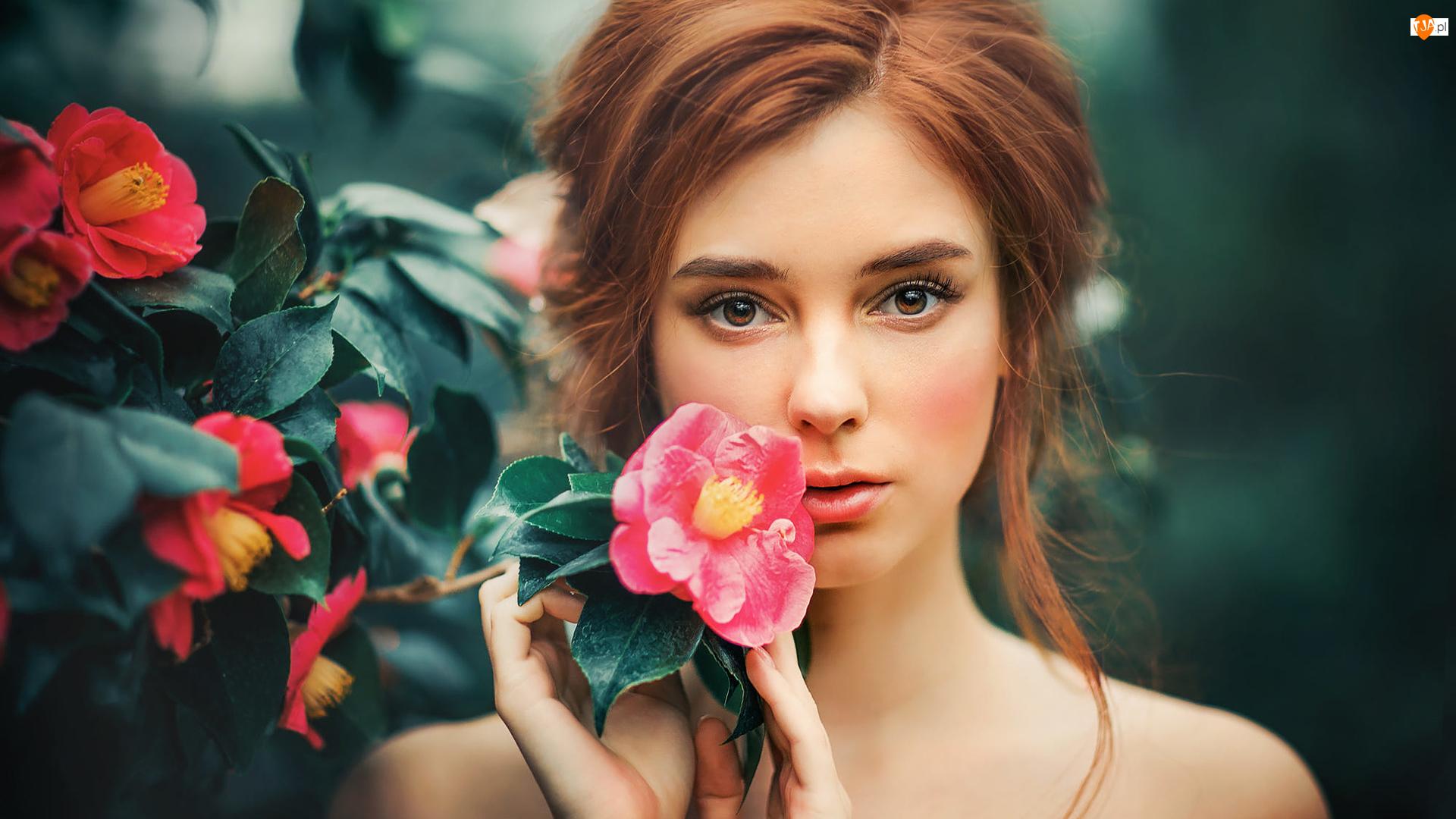 Krzew, Kwiaty, Kwitnący, Dziewczyna, Róże