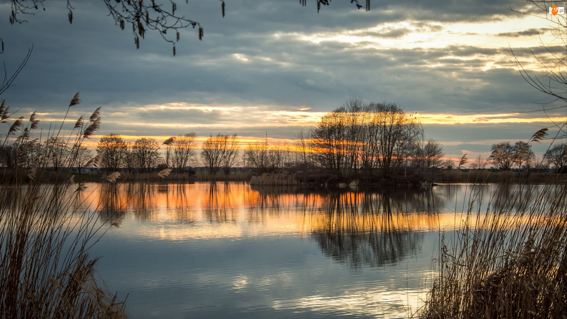 Zachód słońca, Jezioro, Drzewa, Odbicie, Chmury, Trawa