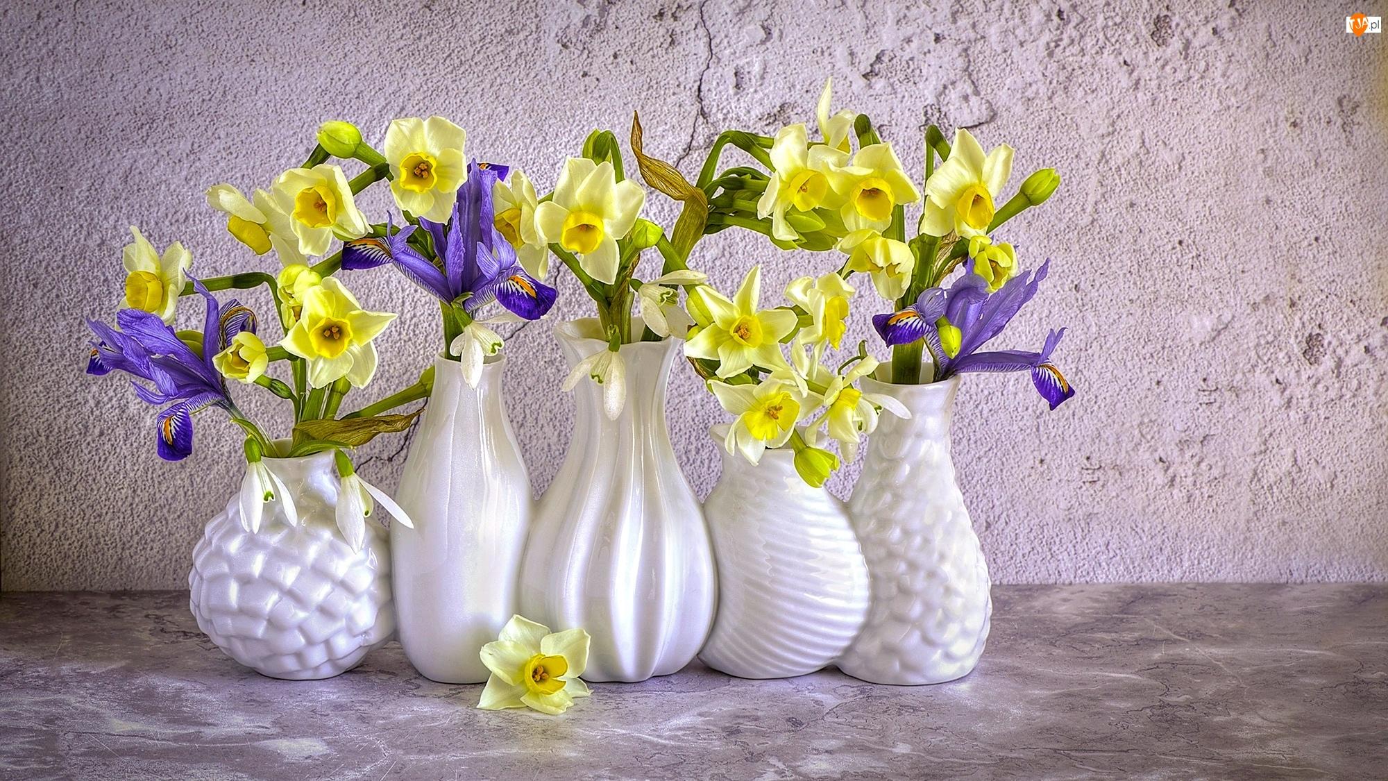 Irysy, Wazony, Narcyzy żonkile, Kwiaty, Białe