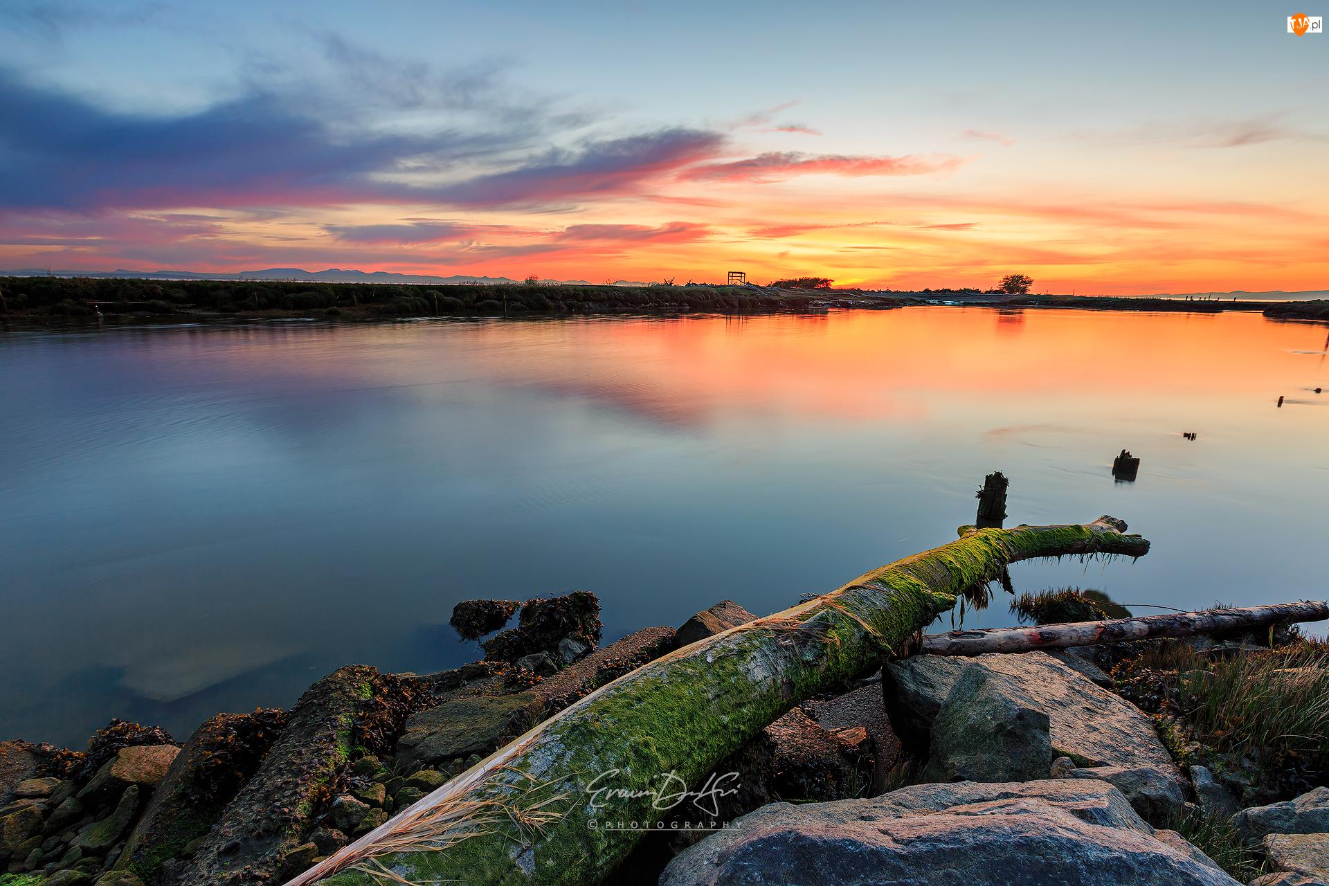 Richmond, Zatoka Strait of Georgia, Kamienie, Kolumbia Brytyjska, Garry Point Park, Zachód słońca, Kanada, Konar