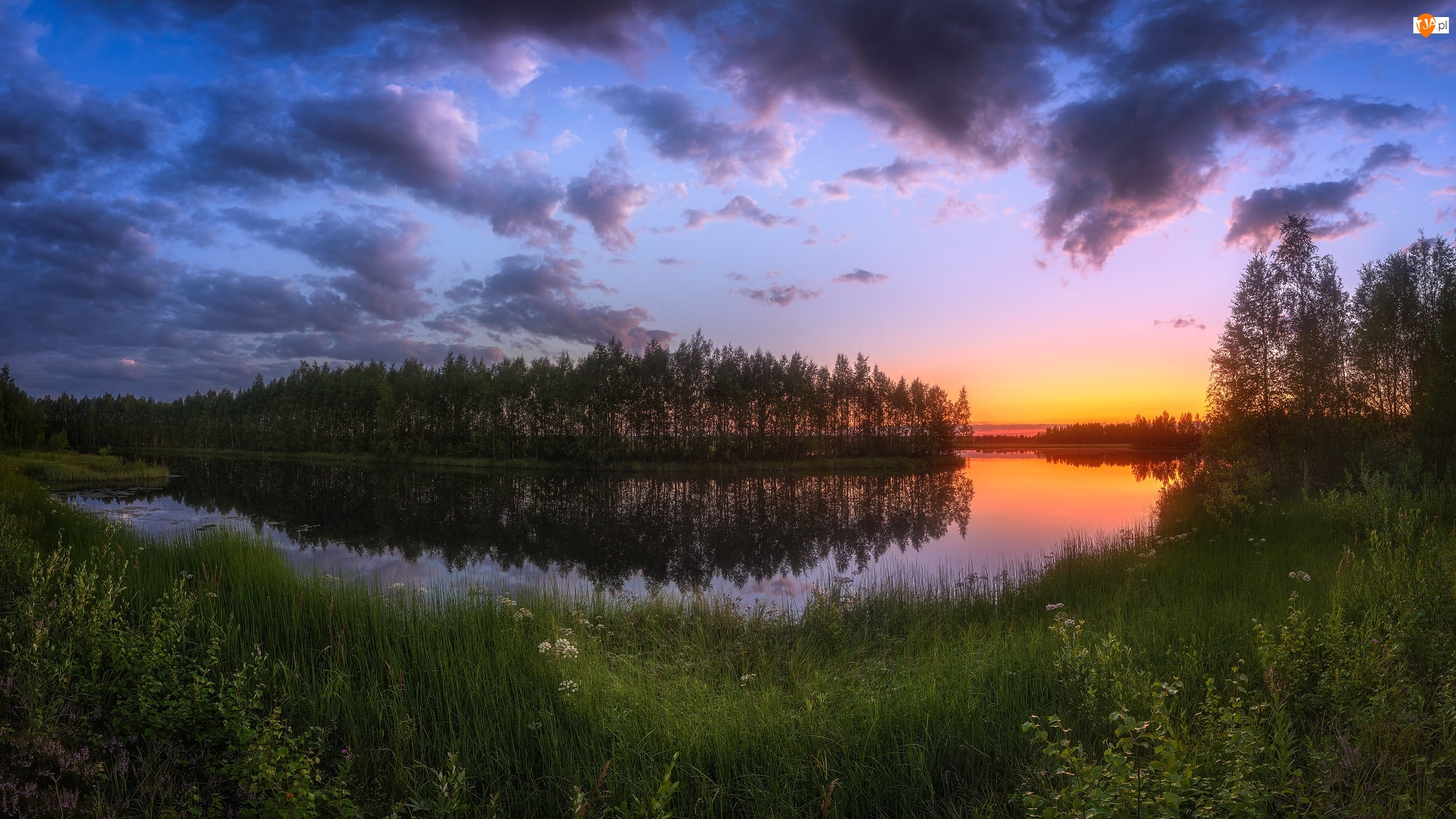 Las, Zachód słońca, Rzeka, Zakole, Drzewa