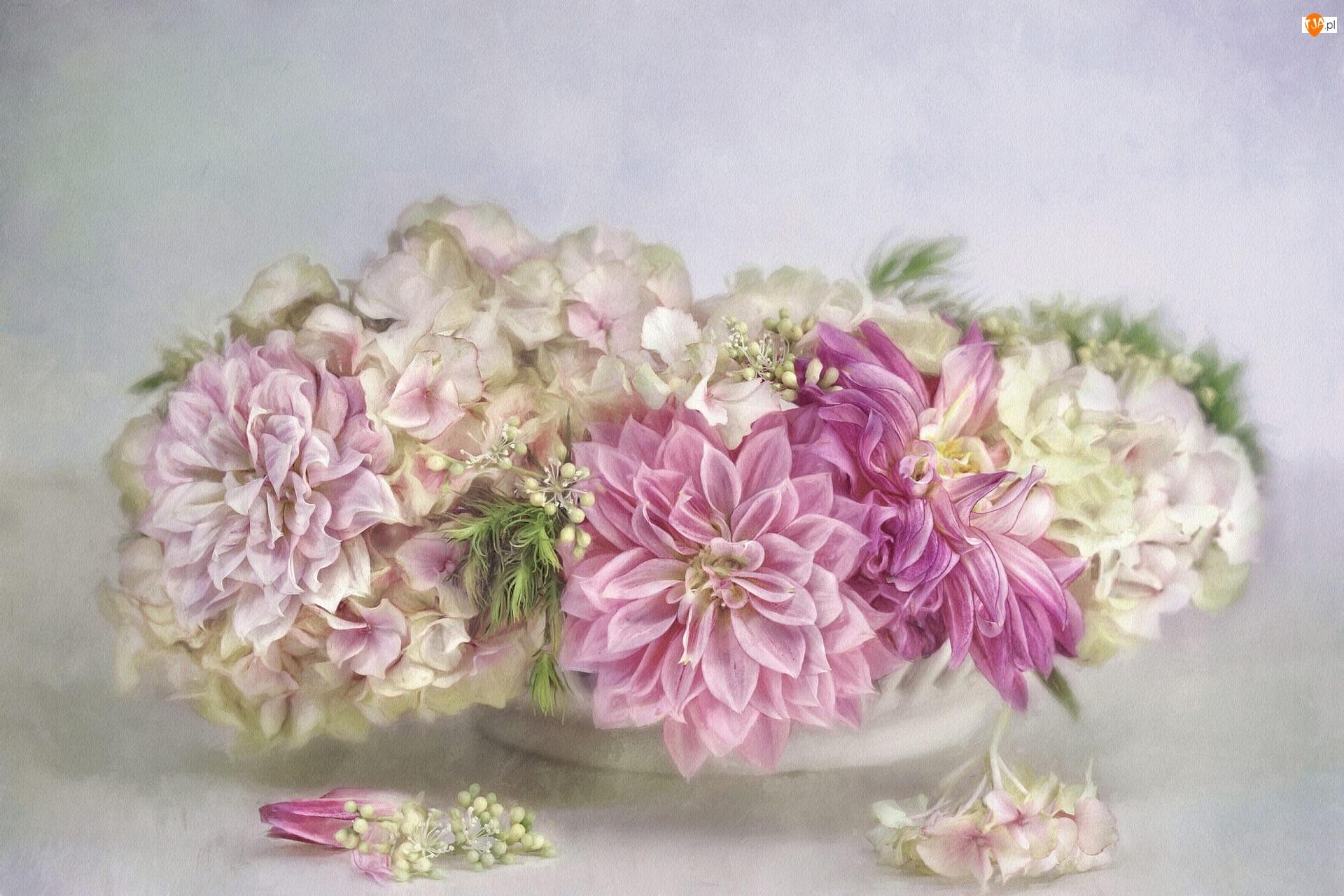 Dalie, Grafika, Kwiaty, Bukiet, Hortensja
