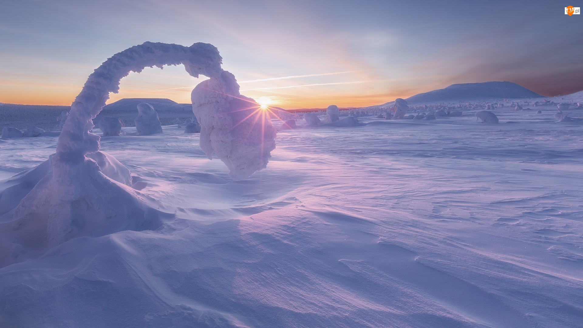 Ośnieżone, Promienie słońca, Góry, Zima, Drzewo