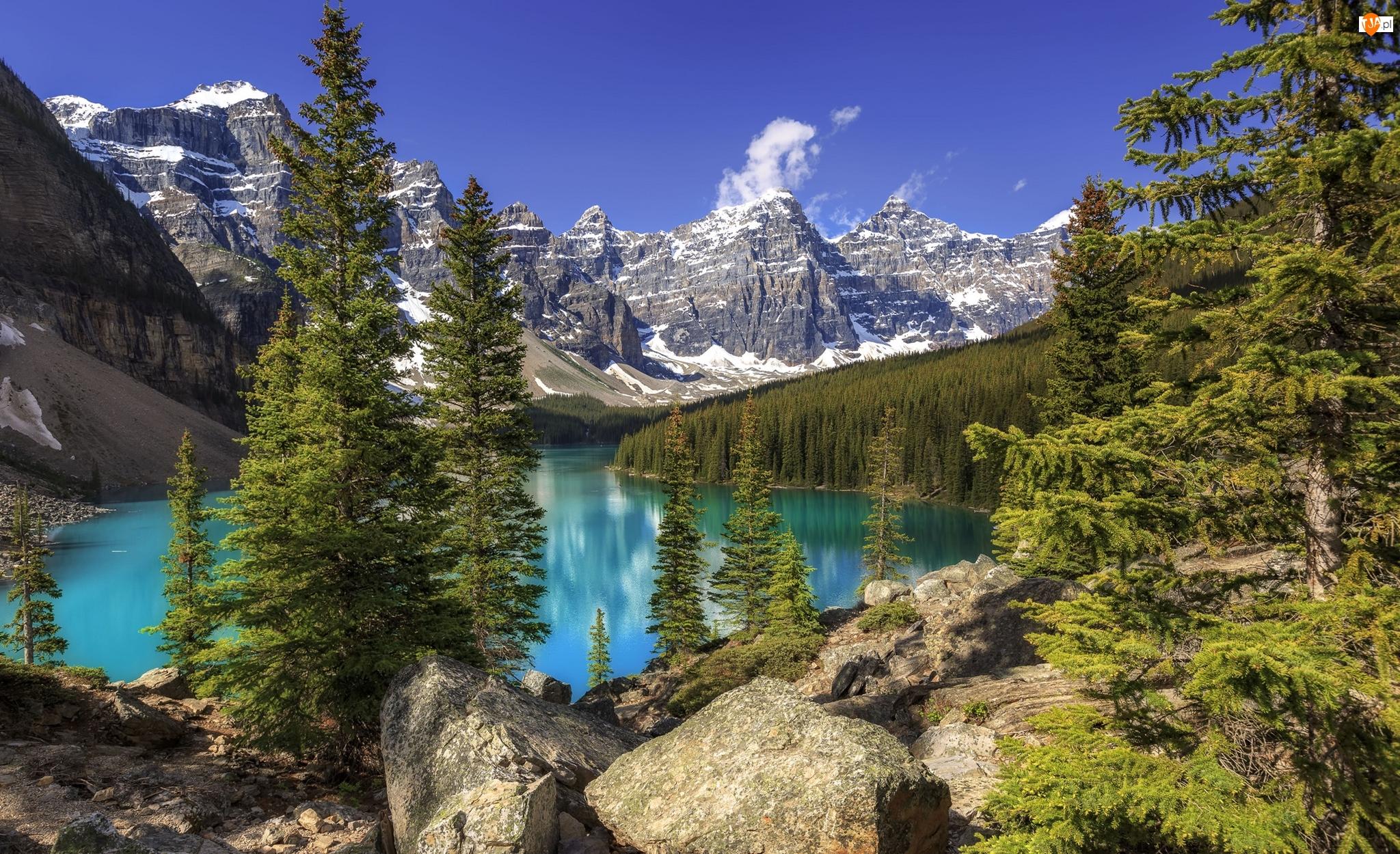 Jezioro Moraine, Las, Kanada, Park Narodowy Banff, Alberta, Góry, Drzewa