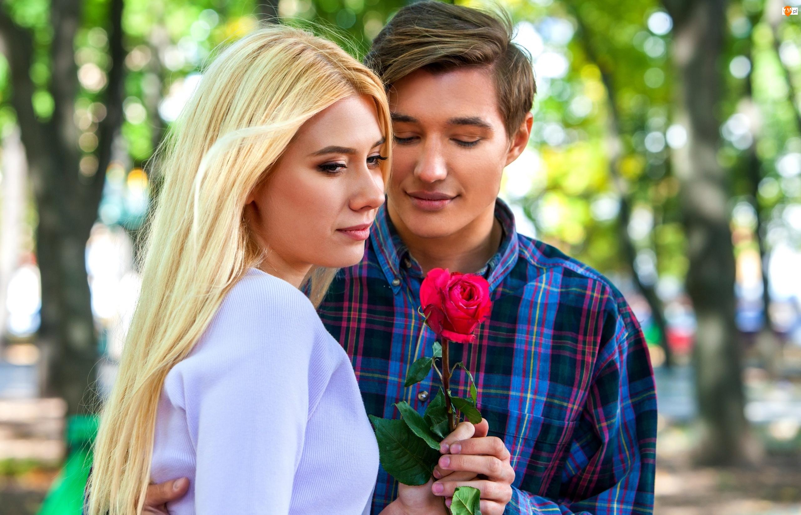 Para, Róża, Mężczyzna, Kobieta, Zakochani