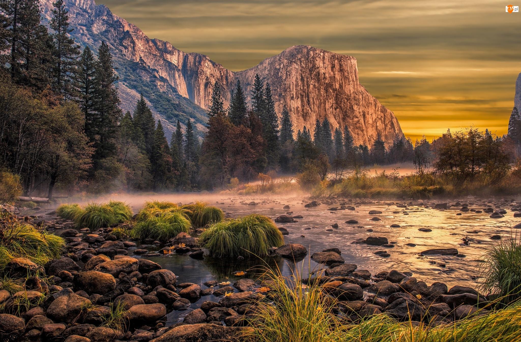 Stany Zjednoczone, Mgła, Park Narodowy Yosemite, Drzewa, Szczyt El Capitan, Góry, Kamienie, Rzeka Merced, Rośliny, Kalifornia