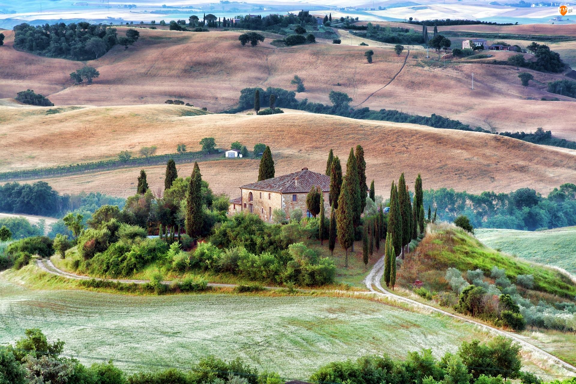 Wzgórza, Dom, Toskania, Włochy, Drzewa