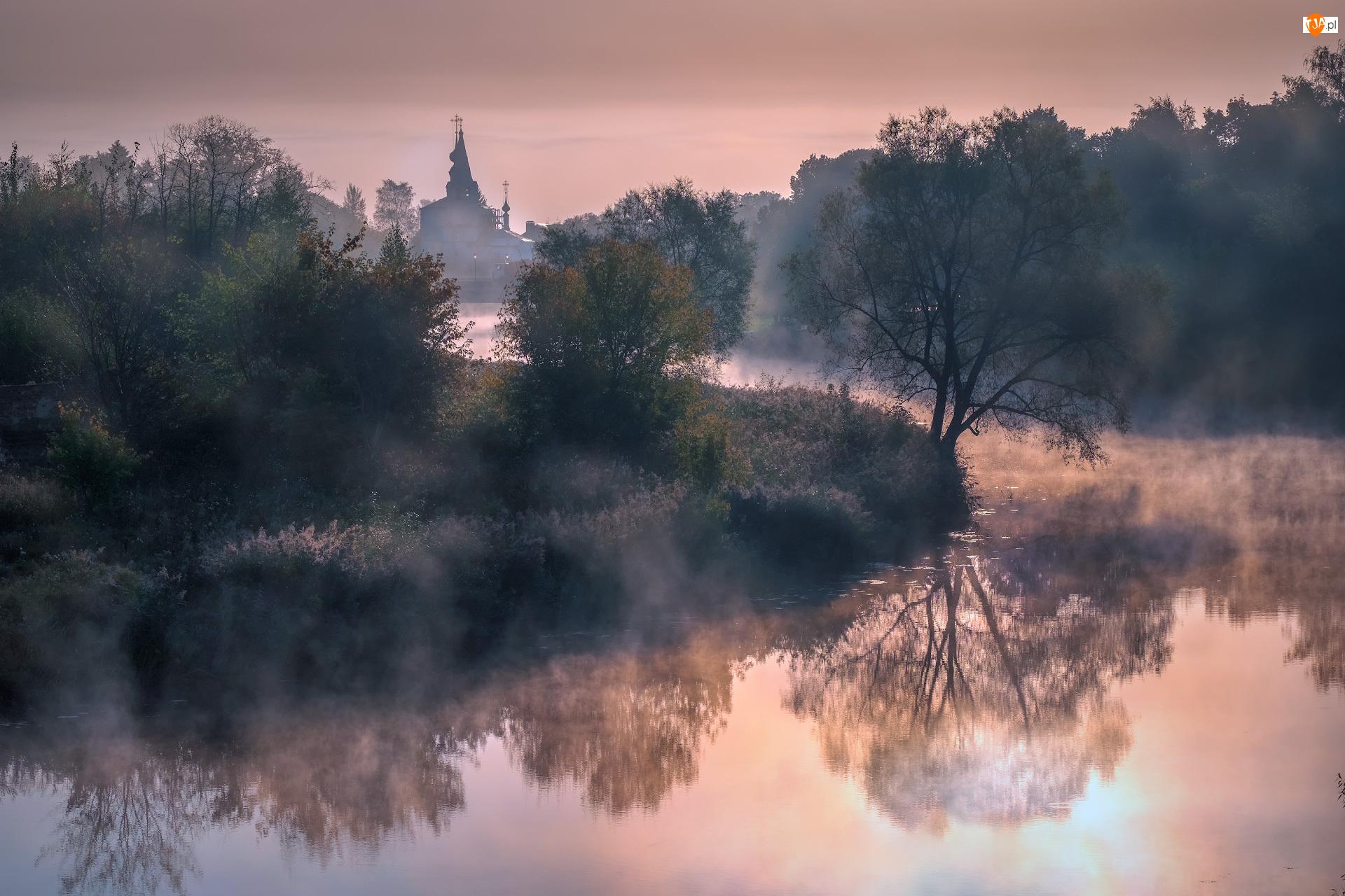Drzewa, Mgła, Rosja, Rzeka Kamienka, Obwód włodzimierski, Suzdal, Cerkiew