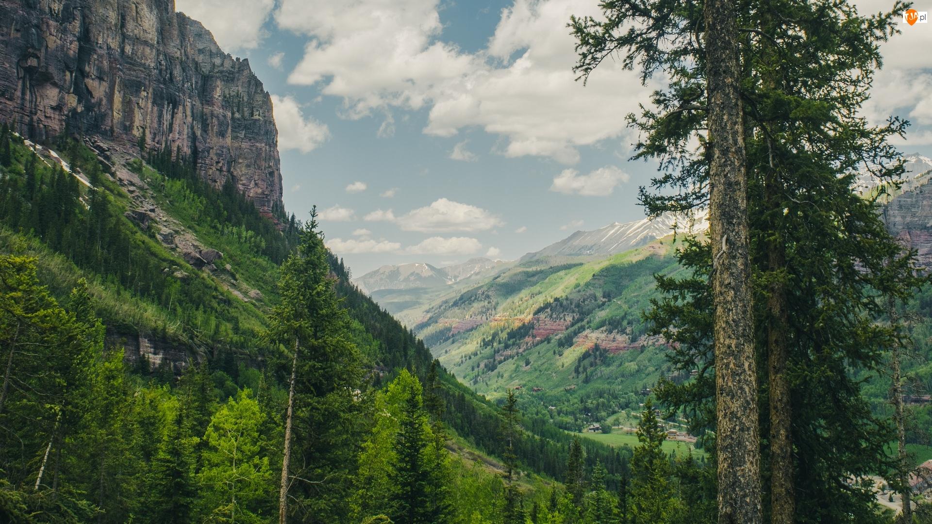 Las, Dolina, Góry, Drzewa, Skały