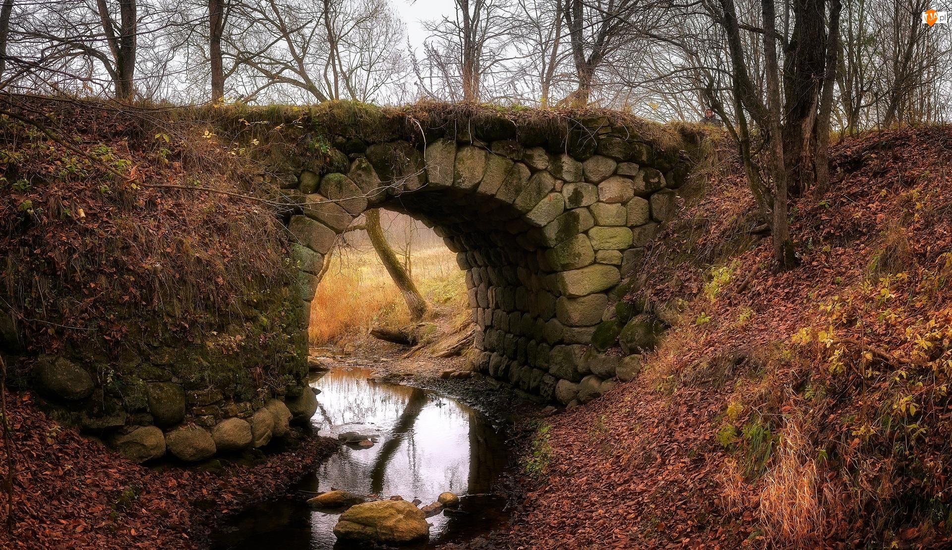 Rzeka, Jesień, Most, Drzewa, Kamienny, Kamienie