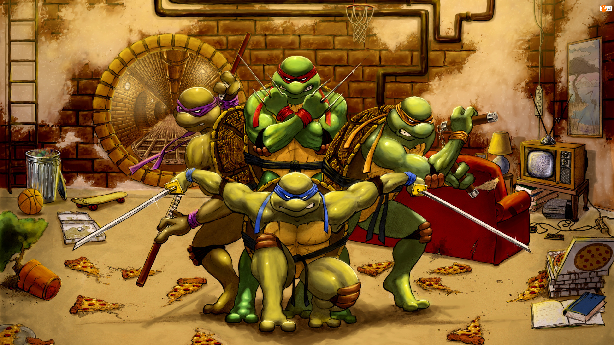 Wojownicze Żółwie Ninja, Grafika, Komiks
