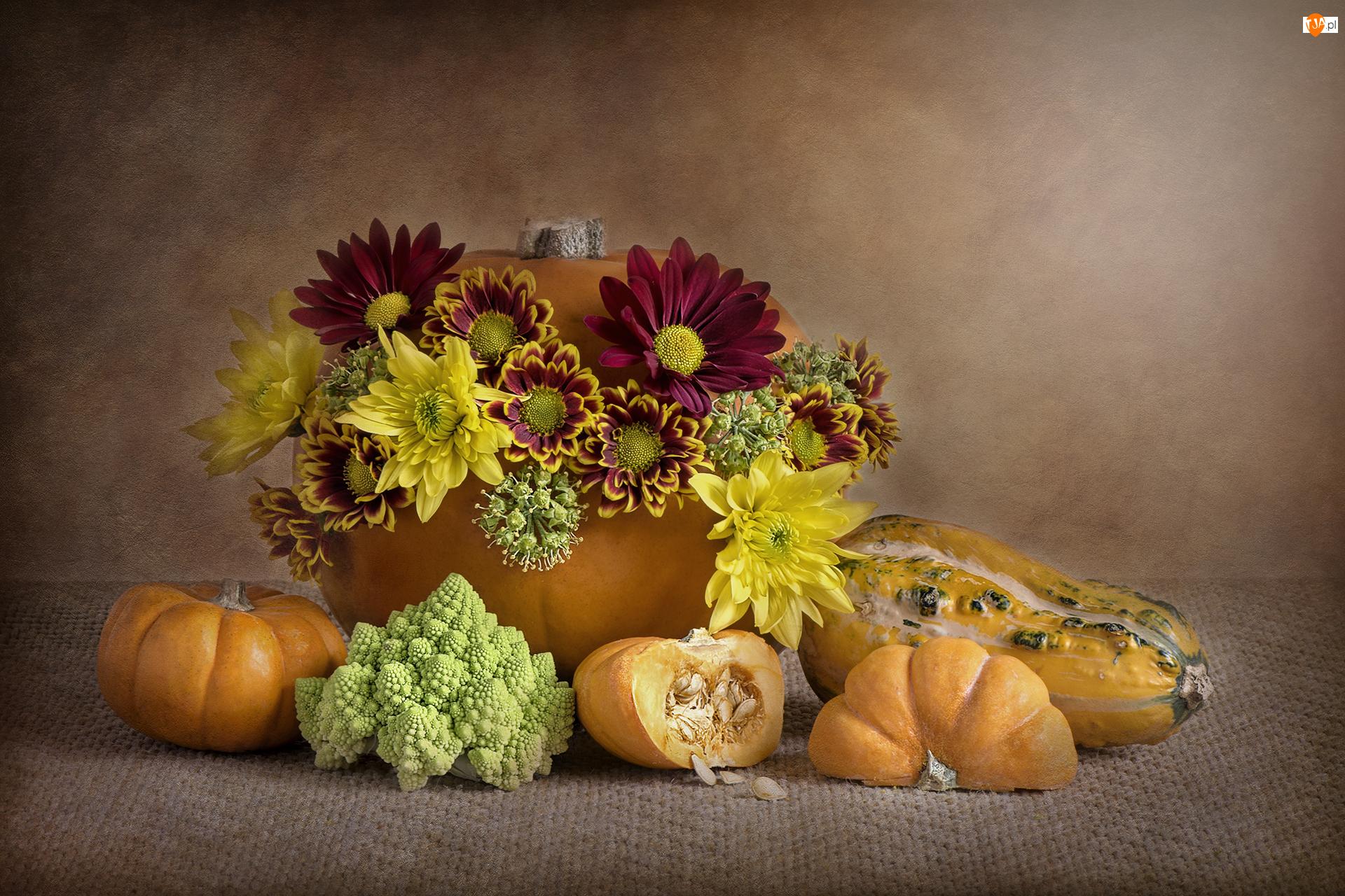 Dynie, Romanesco, Chryzantemy, Kwiaty, Kalafior zielony