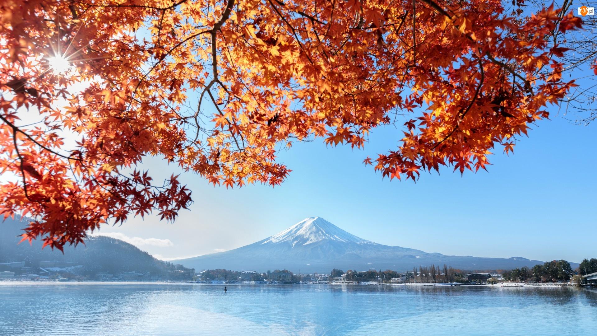 Japonia, Fuji, Honsiu, Gałęzie, Liście, Fudżi, Góra, Stratowulkan, Jezioro