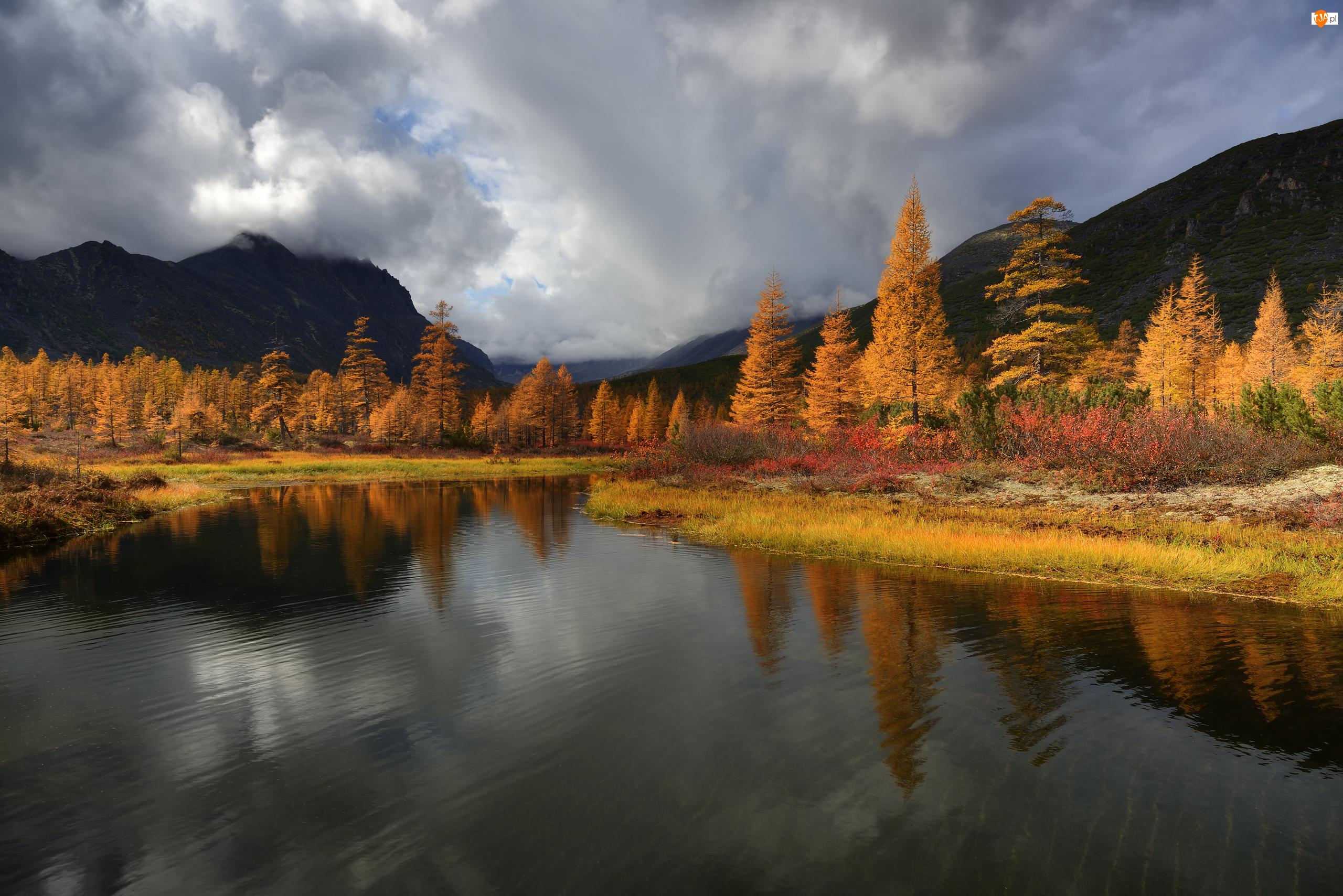 Rosja, Jezioro Jack London, Obwód magadański, Odbicie, Kołyma, Góry Kołymskie, Drzewa, Jesień, Rośliny