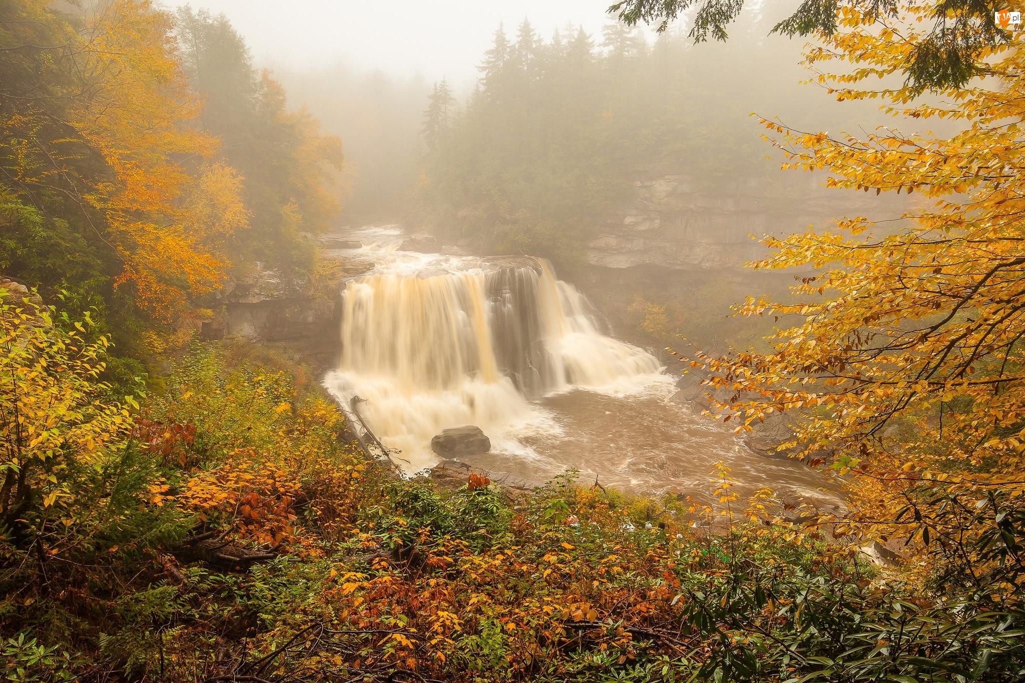 Rzeka, Wodospad, Roslinność, Jesień, Skały, Drzewa, Mgła