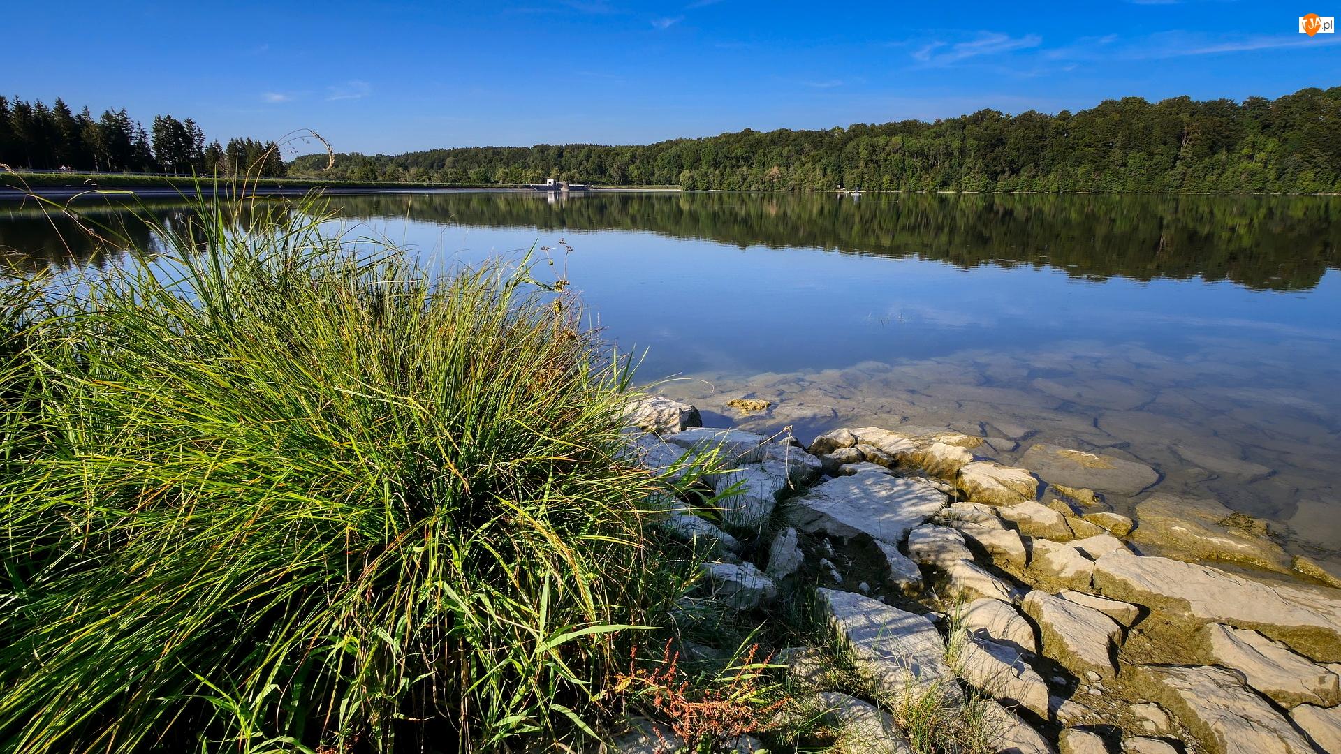 Jezioro, Zbiornik wodny, Kamienie, Zapora, Trawa, Las
