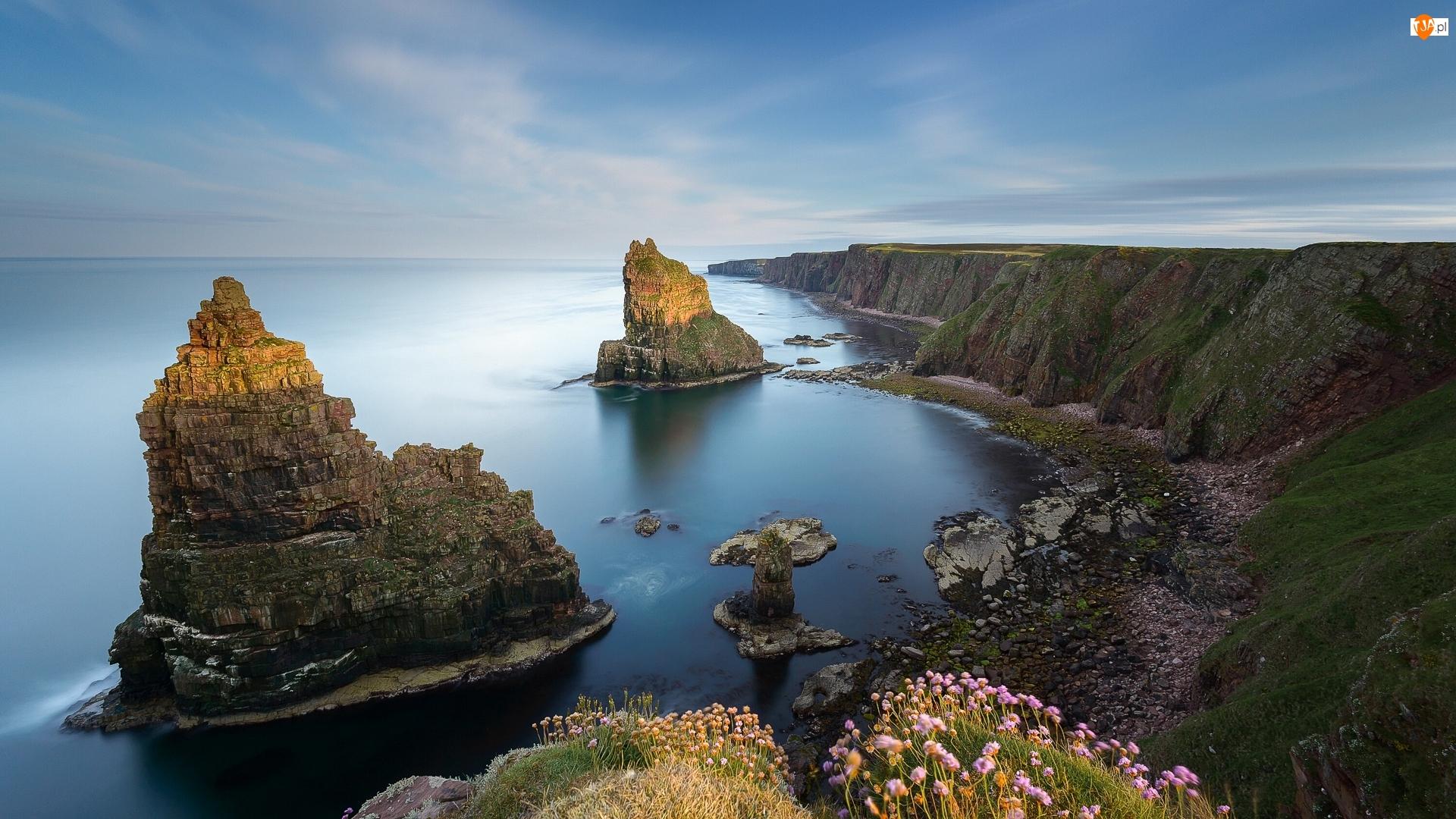 Duncansby Stacks, Przylądek Duncansby Head, Wybrzeże, Roślinność, Morze, Skały, Szkocja, Klif