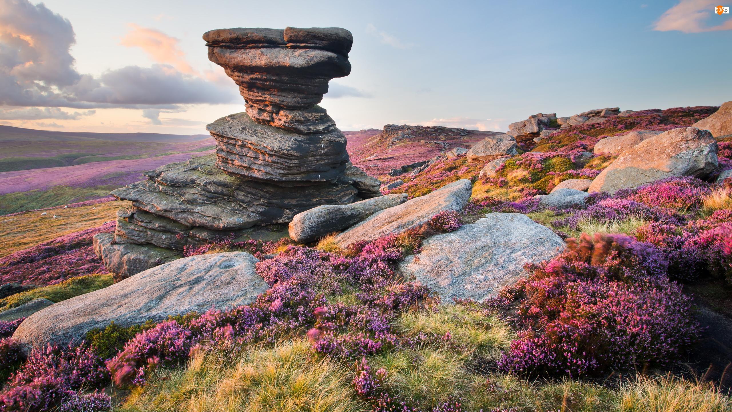 Formacja skalna Salt Cellar, Wrzosowisko, Kamienie, Hrabstwo Derbyshire, Wzgórze, Park Narodowy Peak District, Anglia, Skały