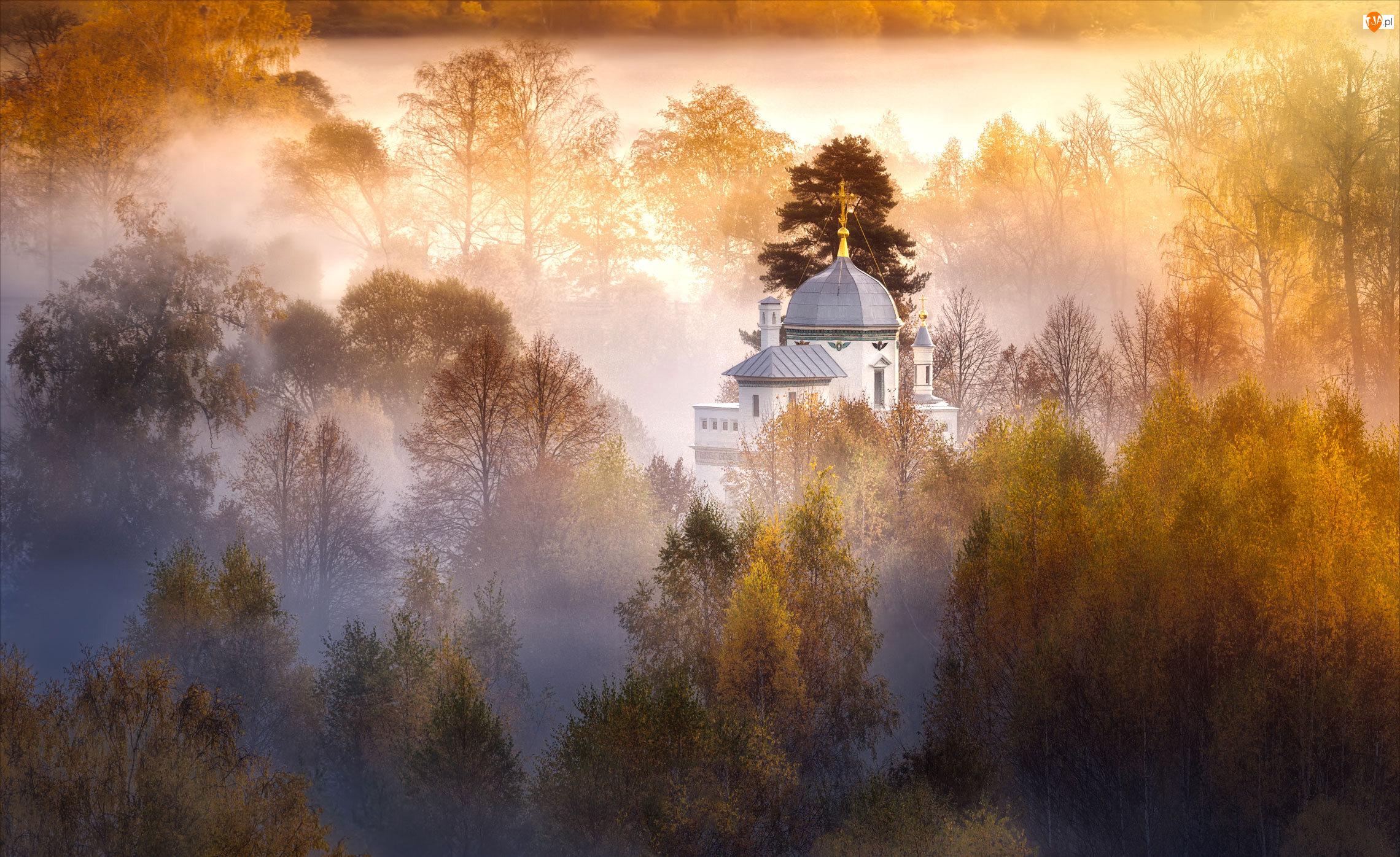 Drzewa, Jesień, Cerkiew, Mgła