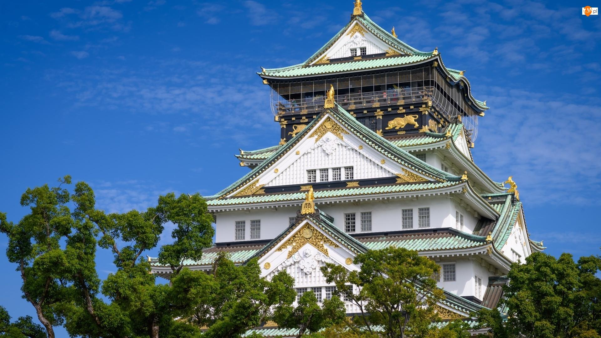Japonia, Błękitne, Niebo, Drzewa, Osaka-jo, Zamek Osaka, Wieża główna, Brokatowy zamek, Tenshu, Osaka