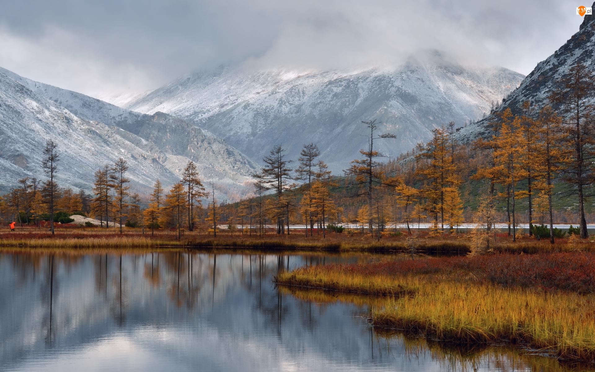 Kołyma, Jesień, Mgła, Magadan, Jezioro Jacka Londona, Drzewa, Rosja, Góry