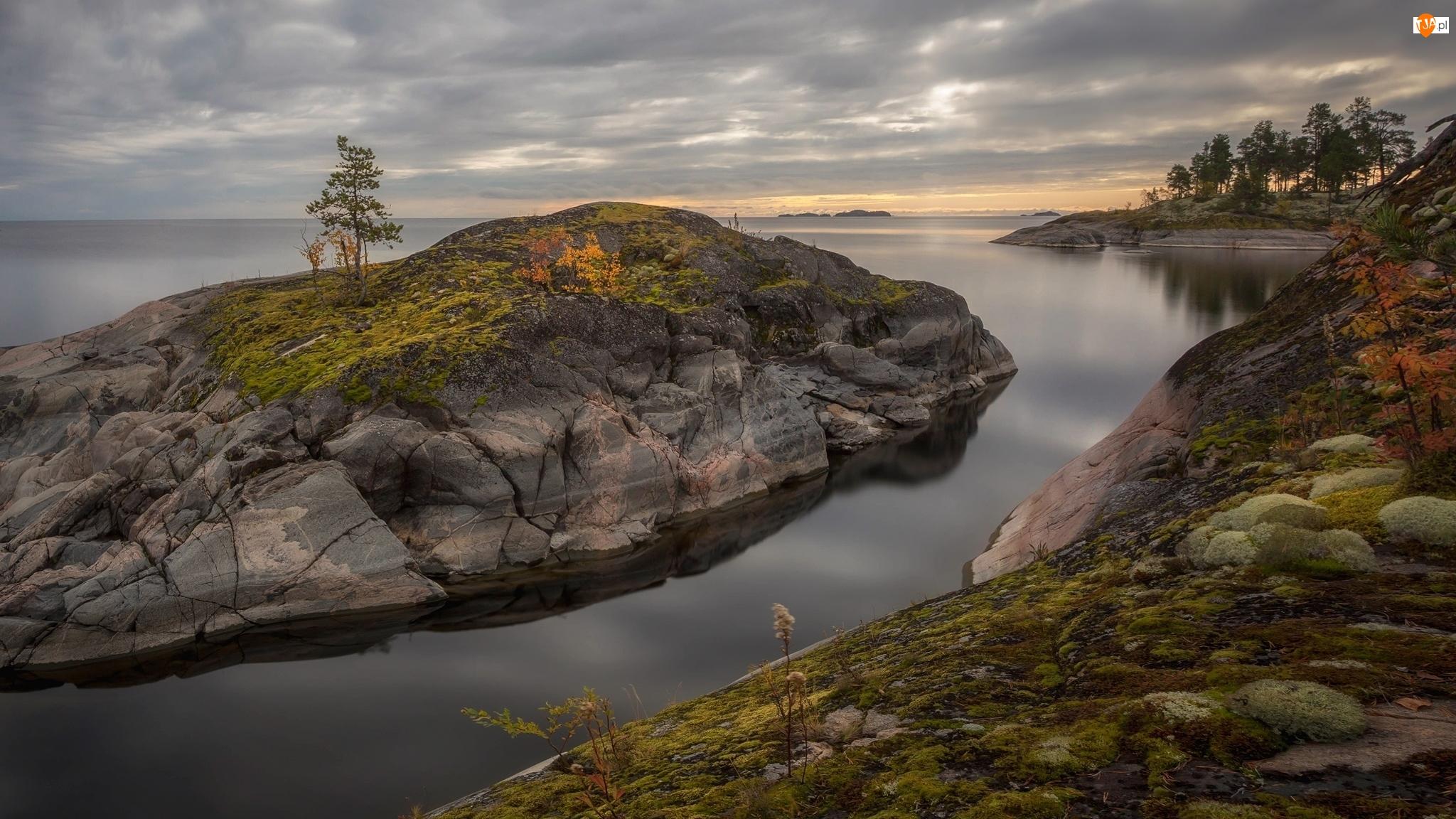 Wysepka, Skały, Rosja, Jezioro Ładoga, Karelia, Mech, Drzewa