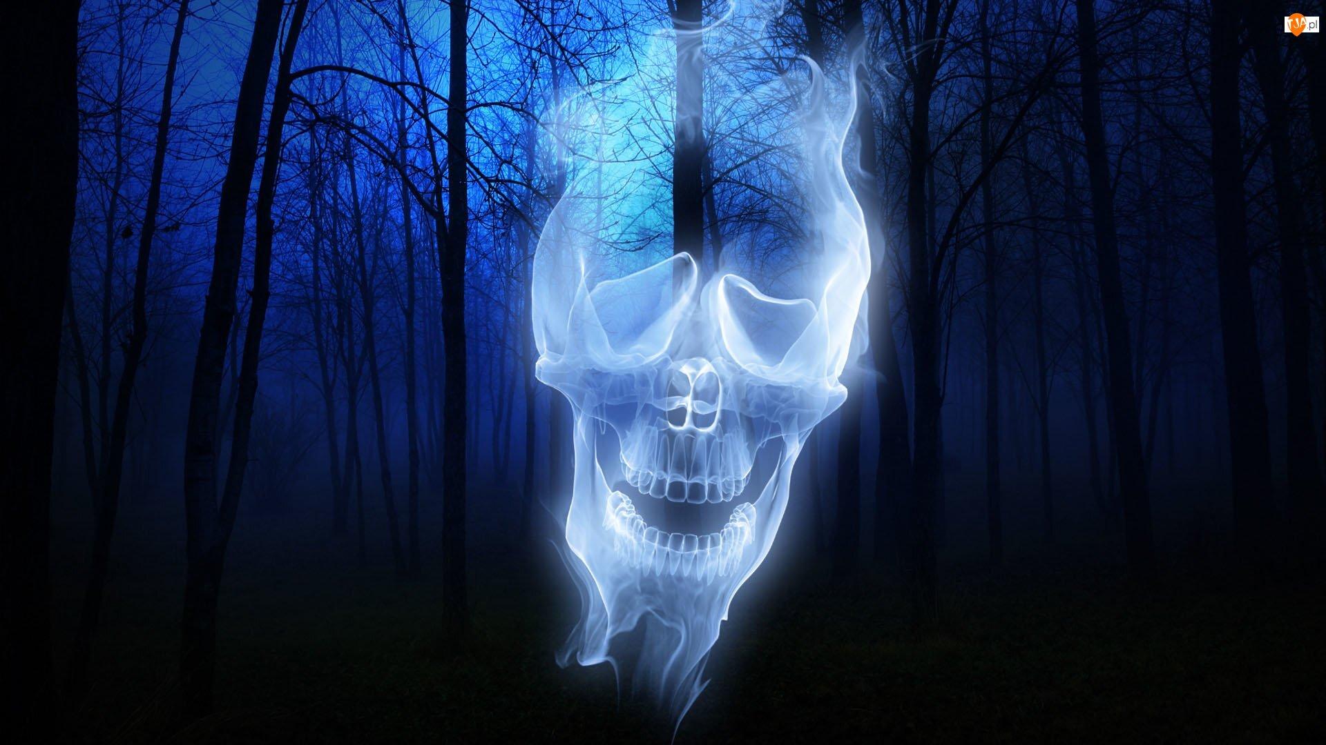 Halloween, Czaszka, Las, Mroczny, Duch