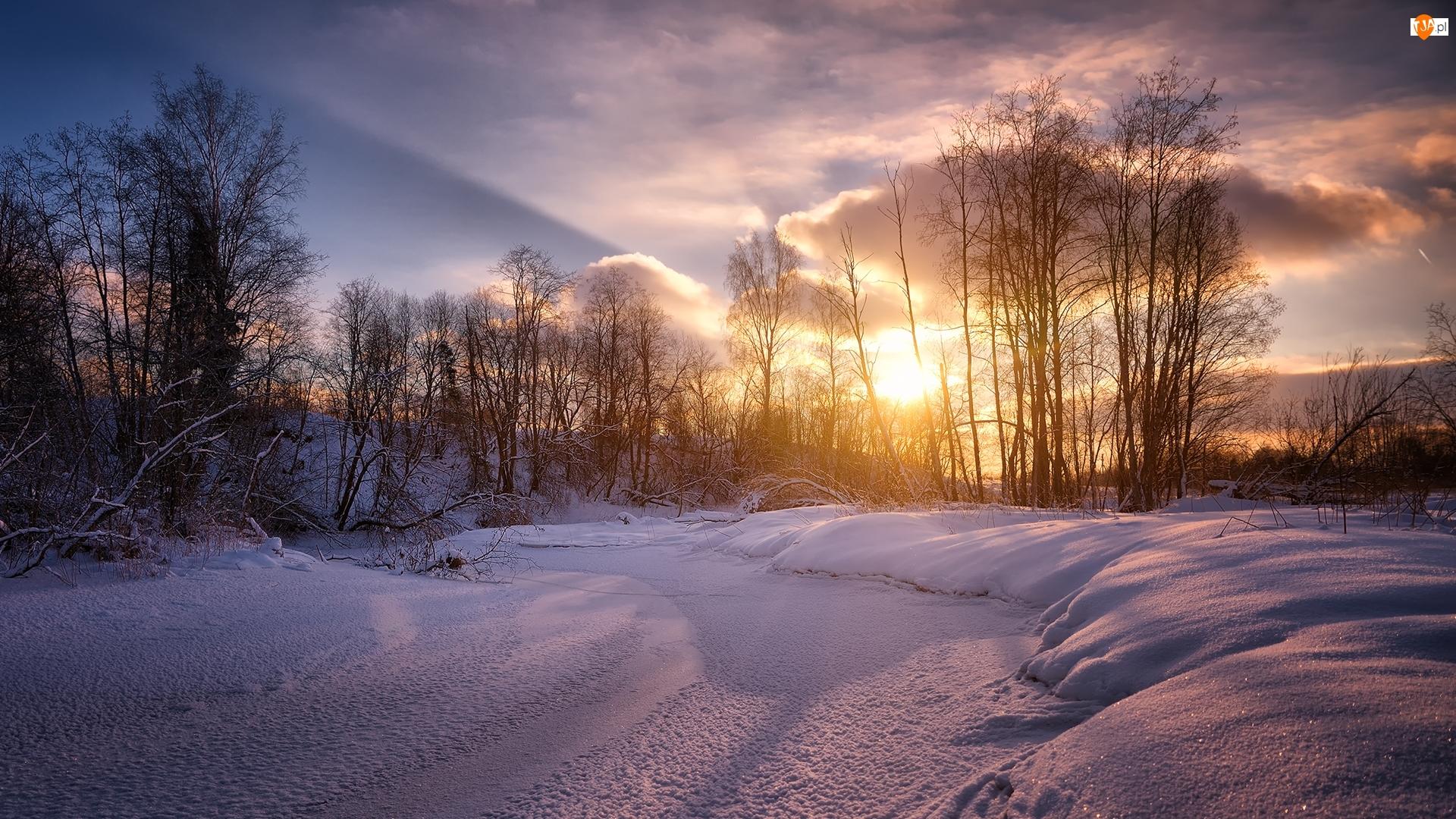Chmury, Zima, Drzewa, Wschód słońca