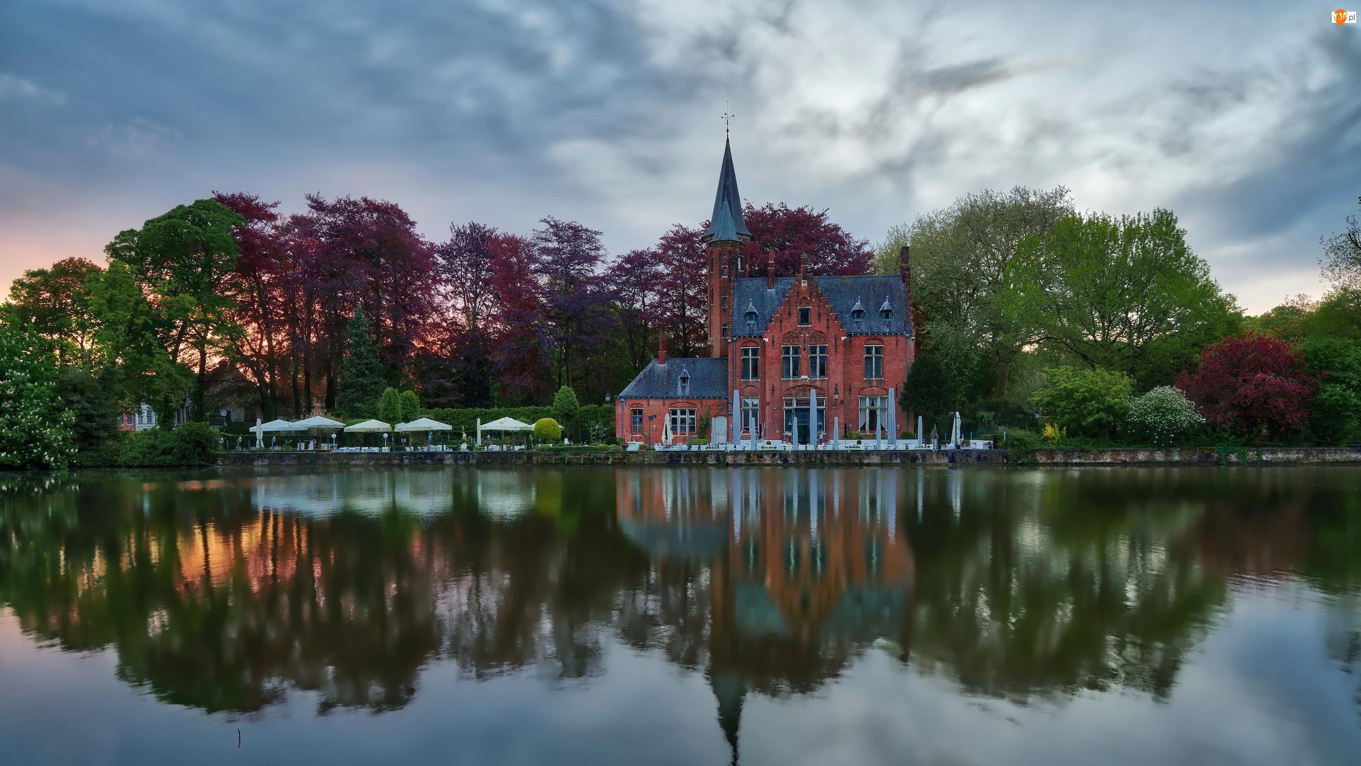 Dom, Restauracja Kasteel Minnewater, Jezioro Lake of Love, Belgia, Drzewa, Brugia