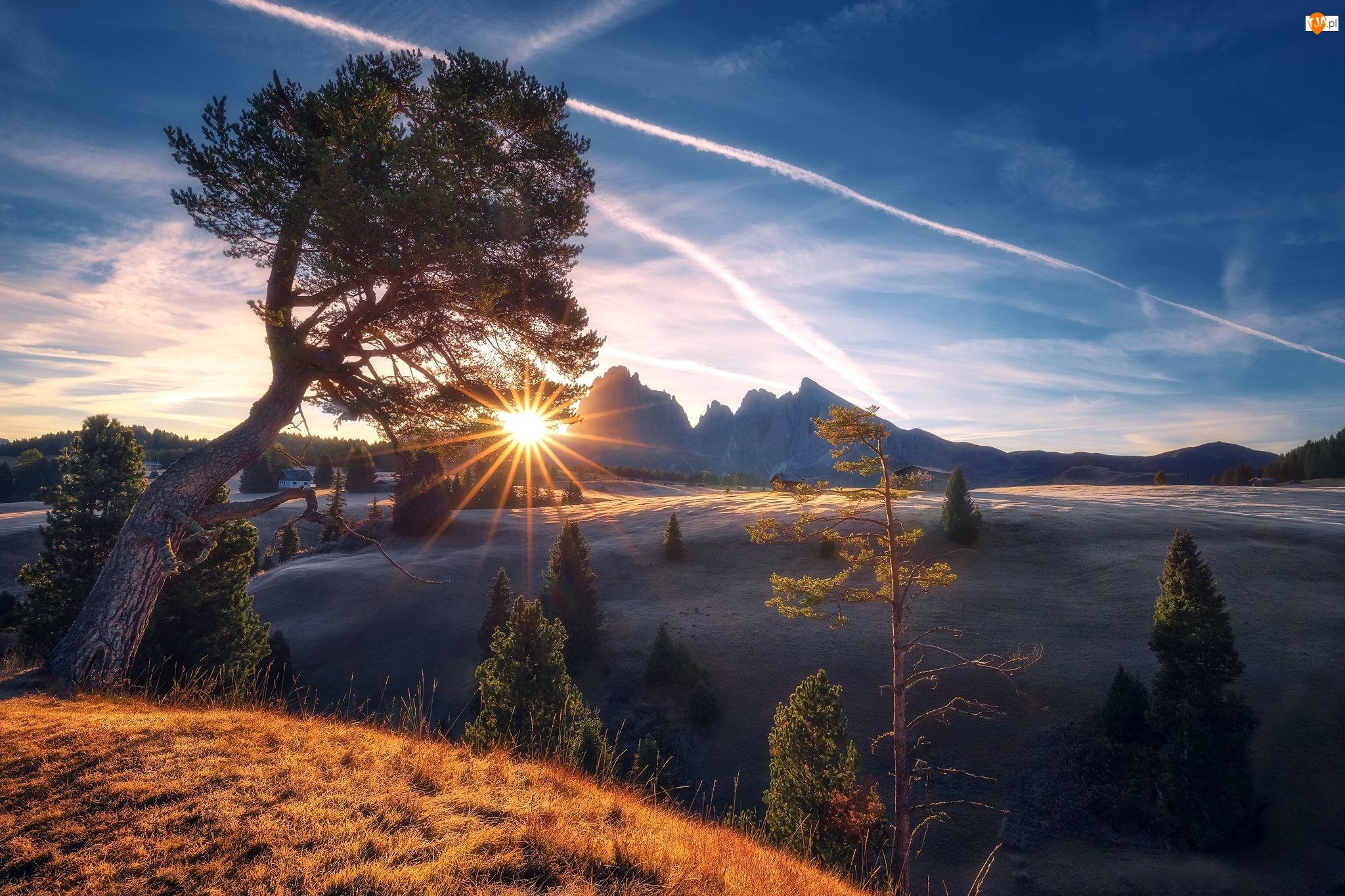 Promienie słońca, Góry, Drzewa, Domy