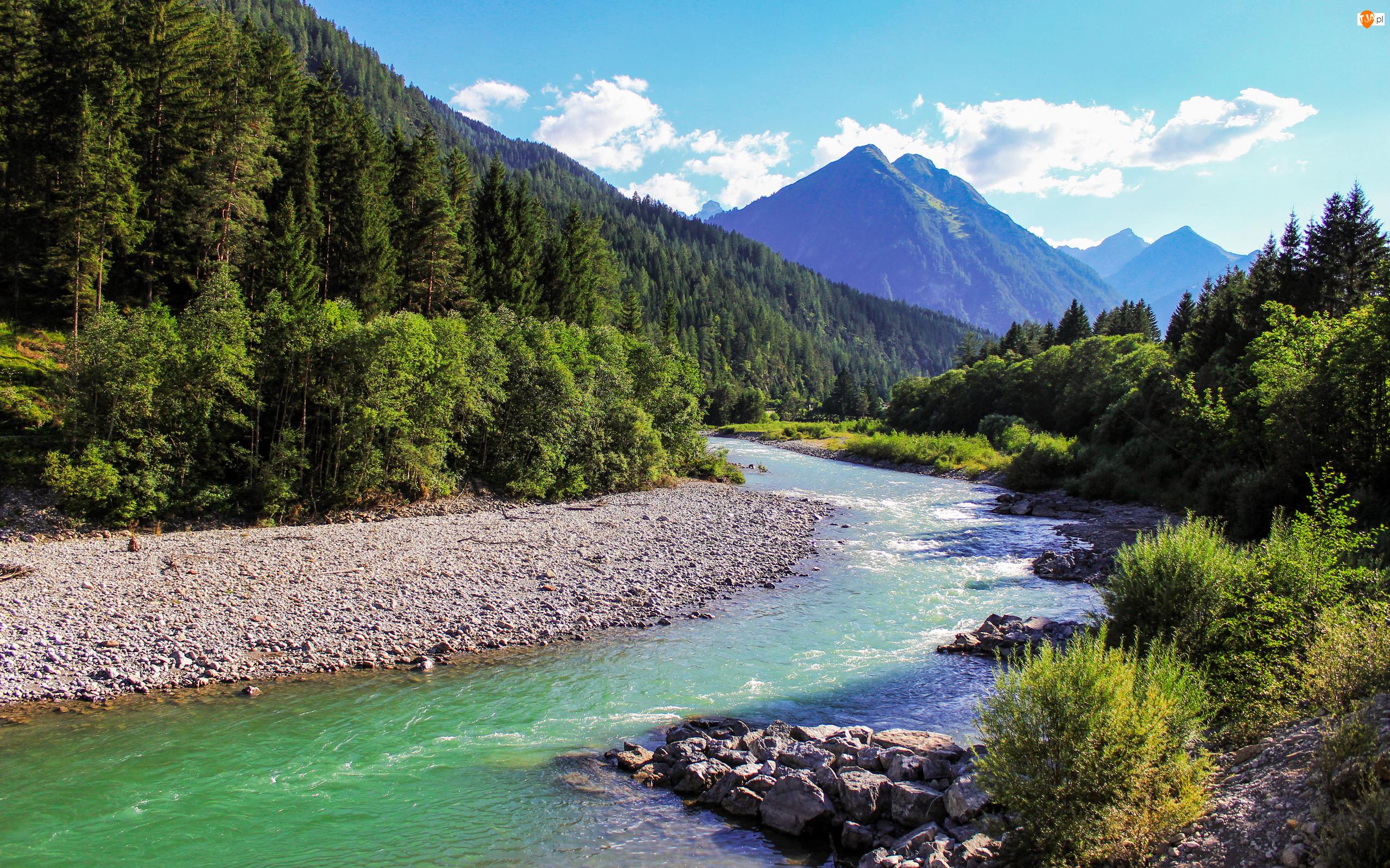 Las, Kamienie, Zielony, Góry, Rzeka