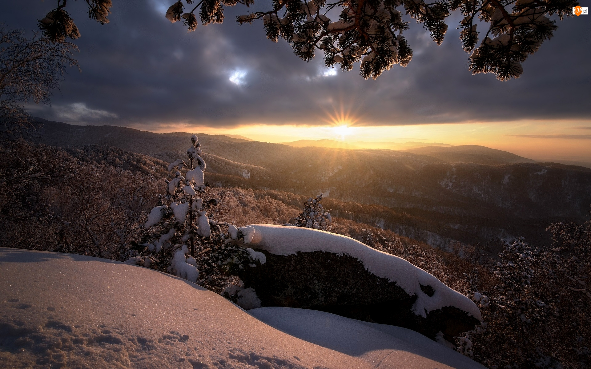 Rosja, Góry, Ałtaj, Chmury, Tajga, Wschód słońca, Ośnieżone, Zima, Drzewa