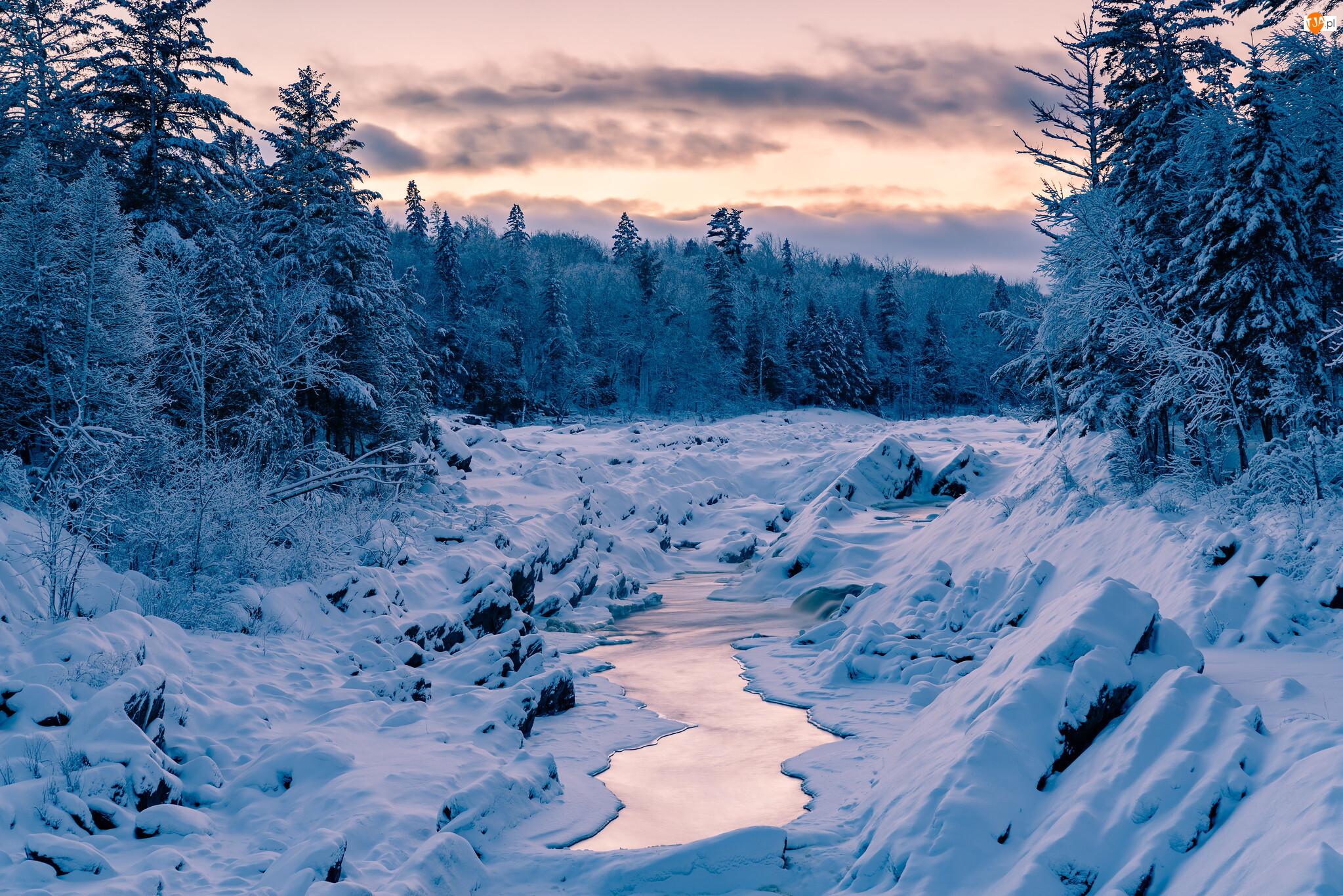 Las, Zima, Ośnieżone, Chmury, Rzeka, Drzewa
