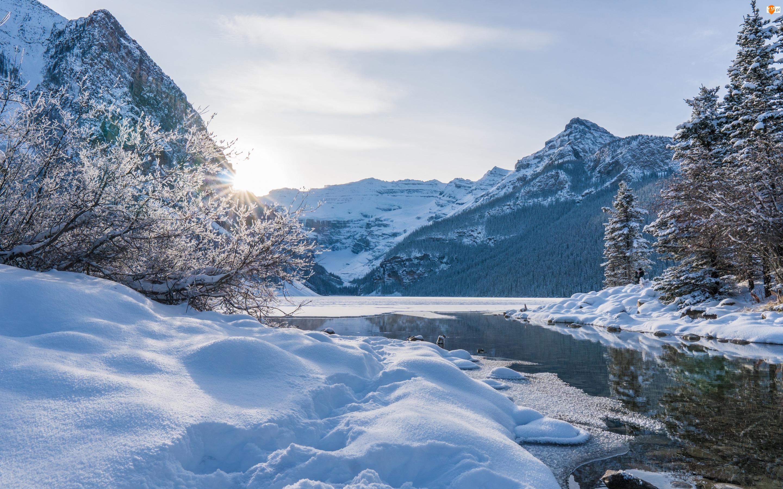 Zima, Alberta, Drzewa, Louise Lake, Promienie słońca, Park Narodowy Banff, Góry Skaliste, Kanada, Jezioro