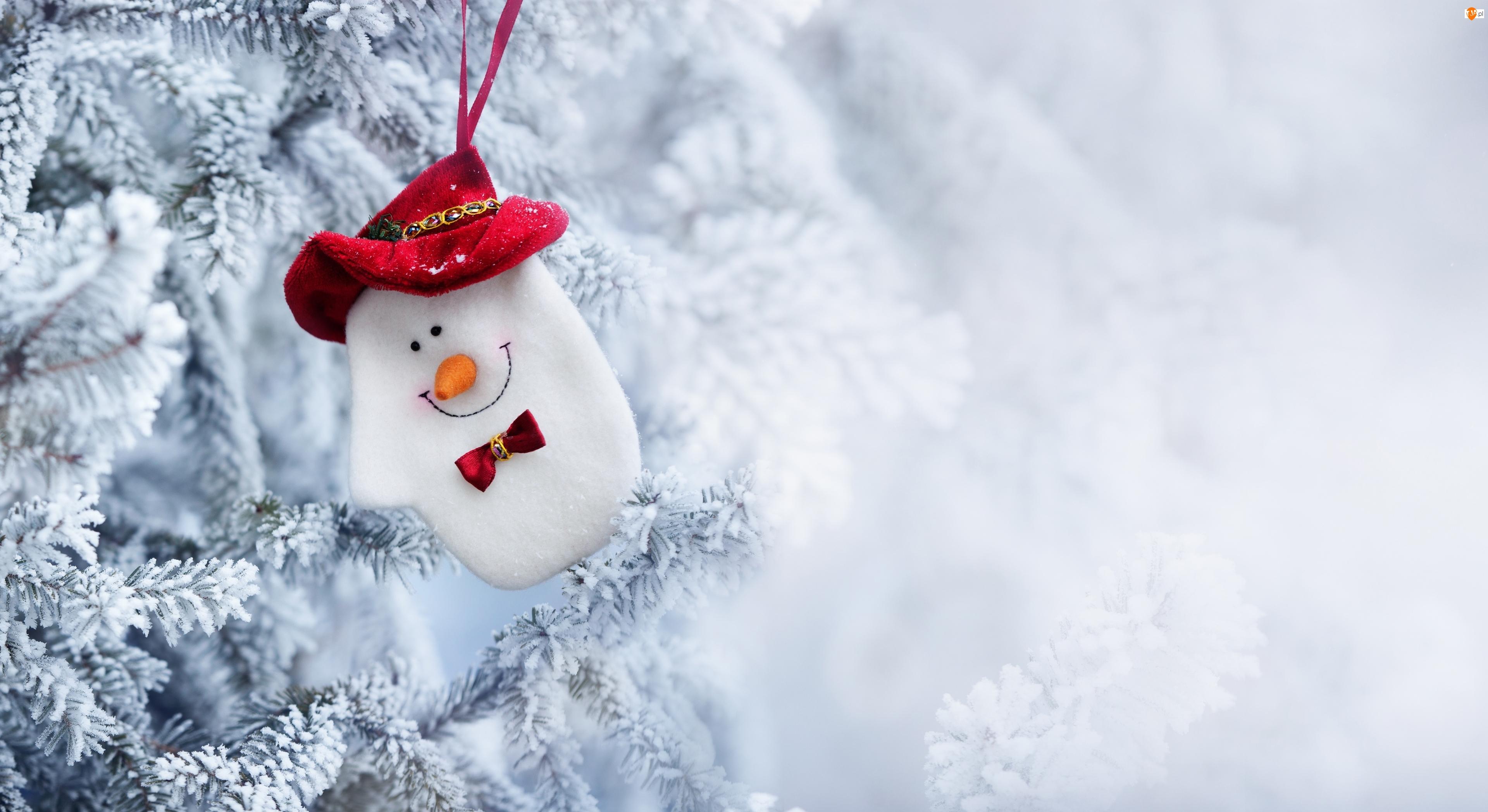 Bałwanek, Zawieszka, Zima, Boże Narodzenie, Gałązki, Śnieg
