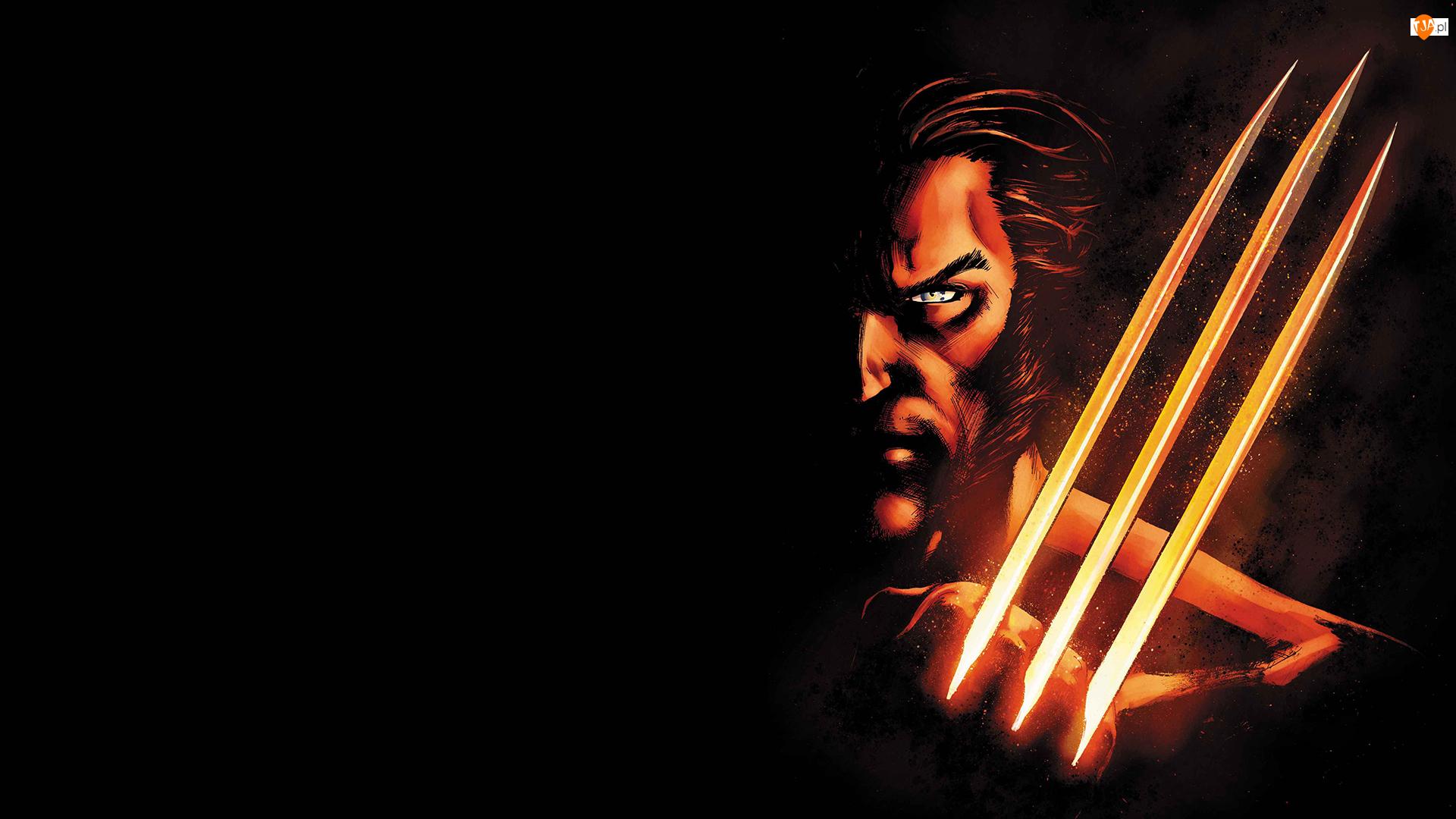 Grafika, Film, Postać, Aktor, X-Men, Logan, Hugh Jackman, Wolverine