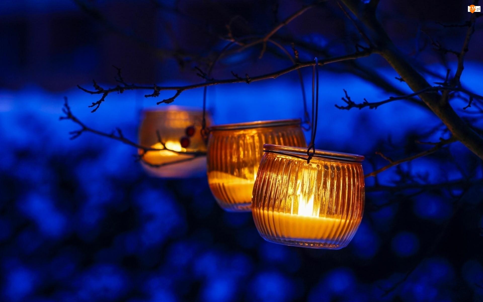 Noc, Trzy, Lampiony, Gałązki