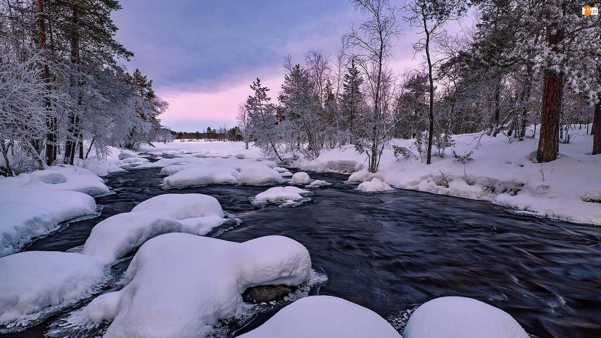 Zaśnieżone, Drzewa, Rzeka, Zima, Kamienie