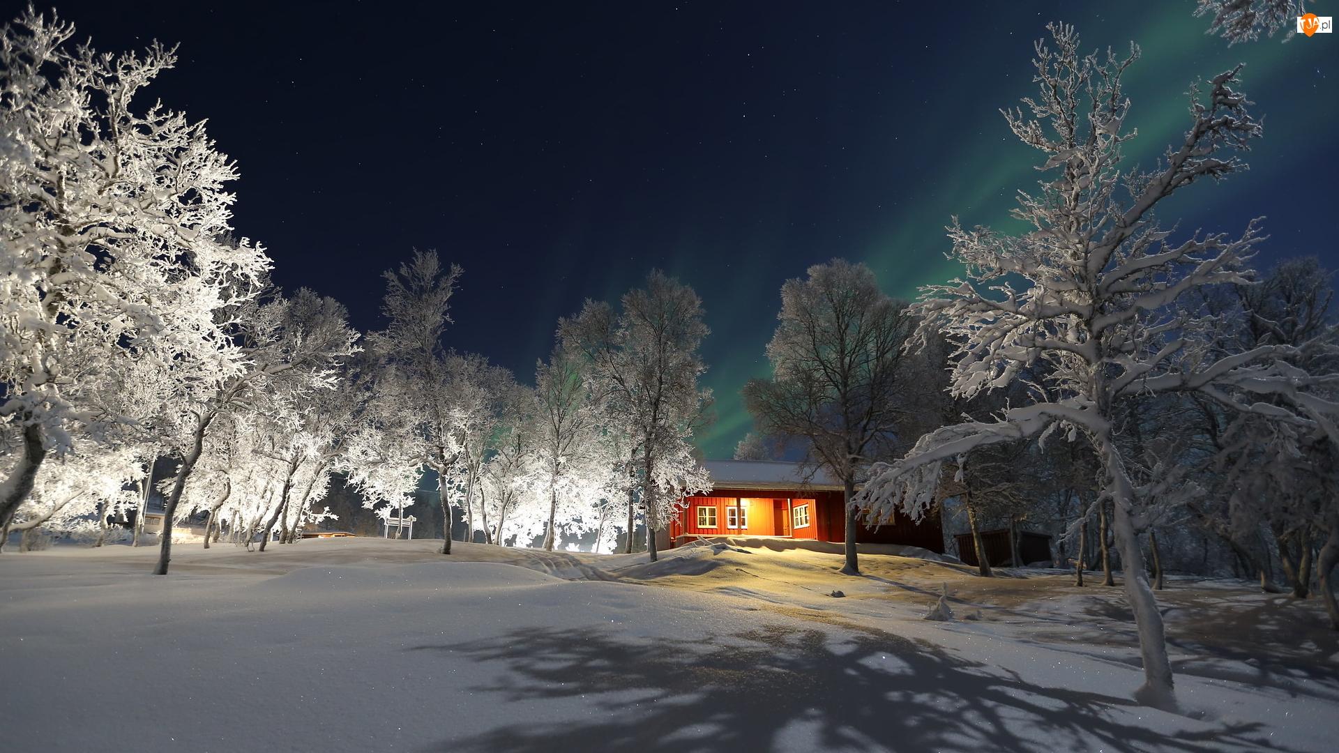 Ośnieżone, Zima, Śnieg, Zorza polarna, Drzewa, Dom