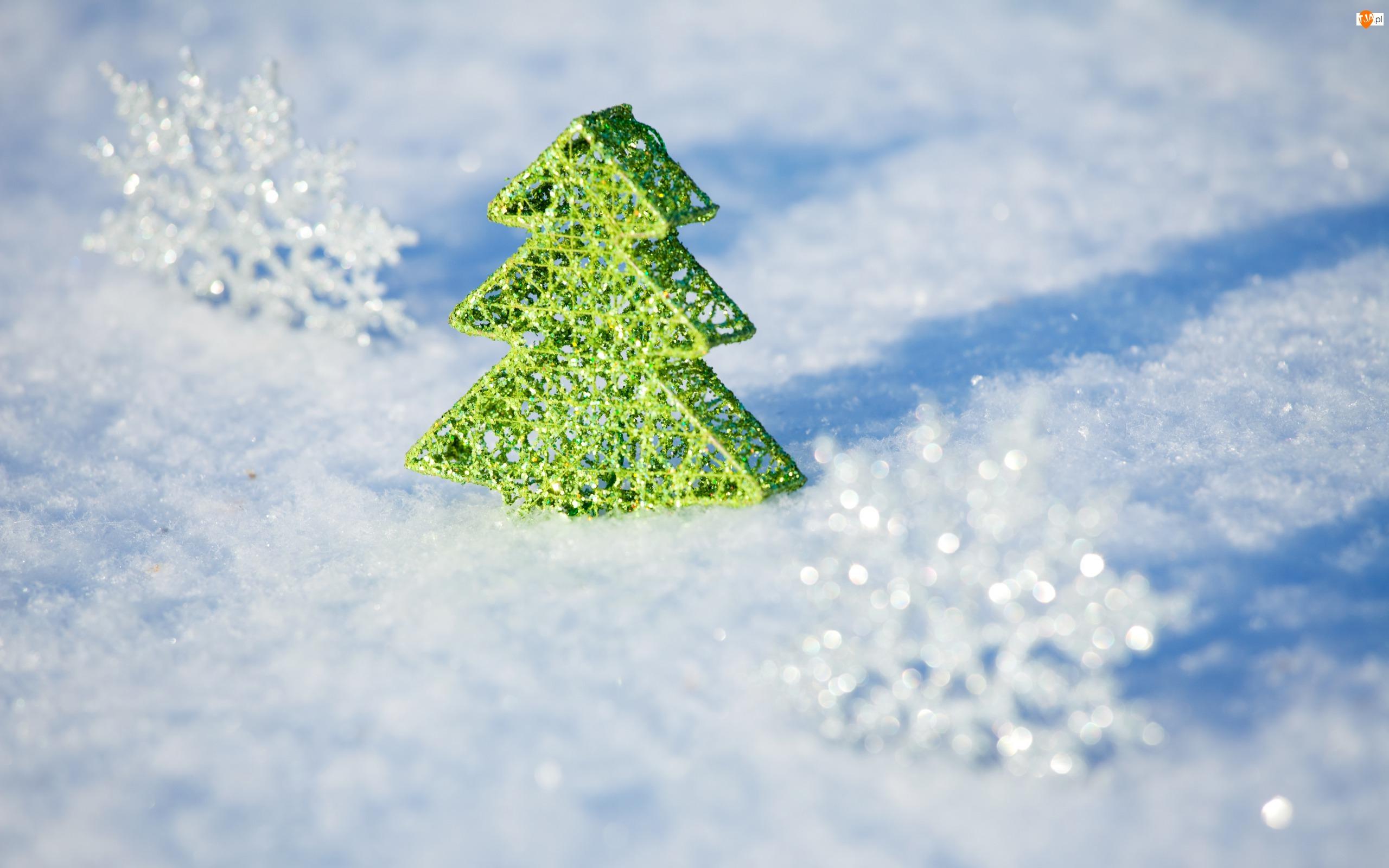 Choinka, Śnieg, Dekoracja, Zielona