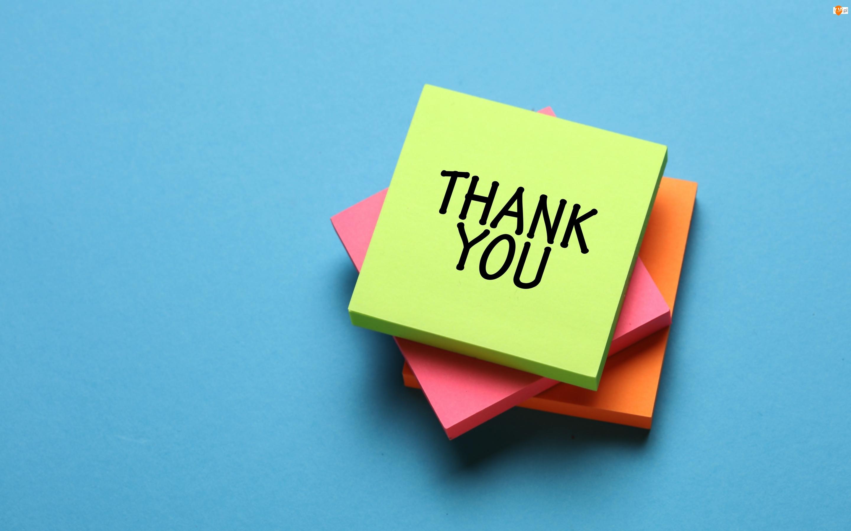 Napis, Kolorowe, Karteczki, Podziękowanie