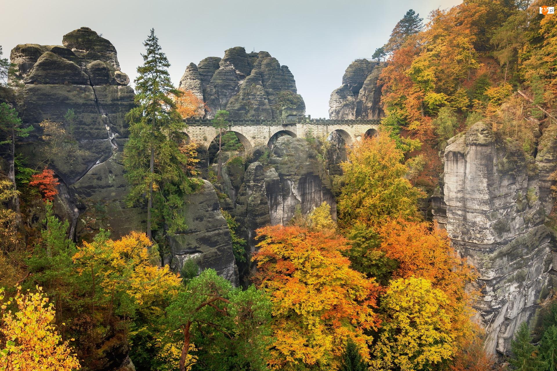 Niemcy, Góry Połabskie, Park Narodowy Saskiej Szwajcarii, Formacja skalna, Bastei, Drzewa, Most, Jesień, Skały