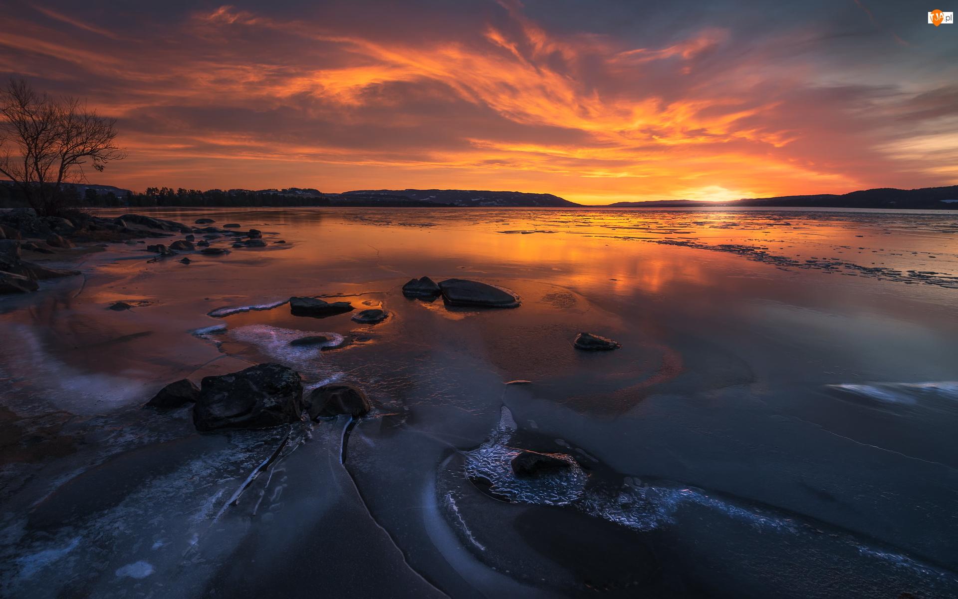 Chmury, Zachód słońca, Norwegia, Jezioro Tyrifjorden, Buskerud, Drzewo, Zima