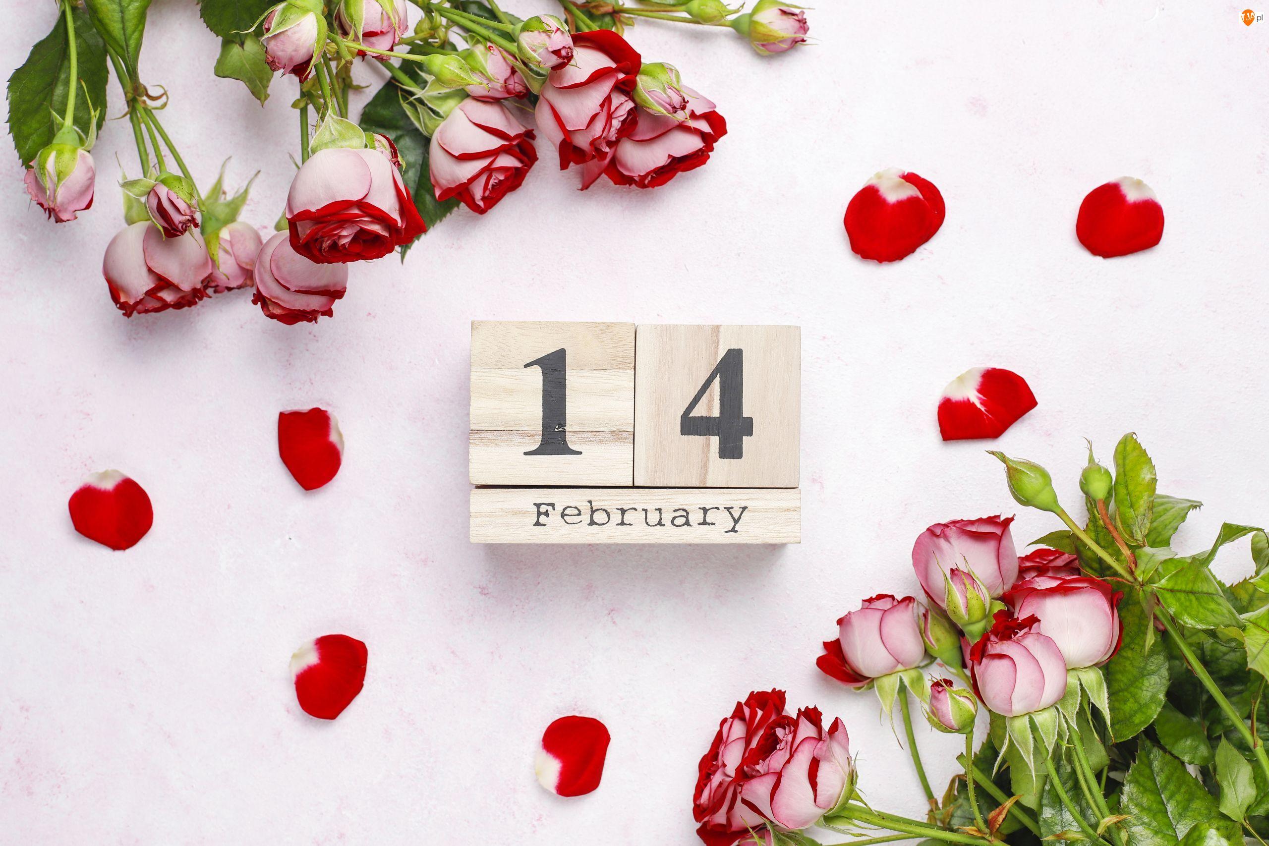 Róże, Kwiaty, Data, Walentynki, Klocki, 14 luty
