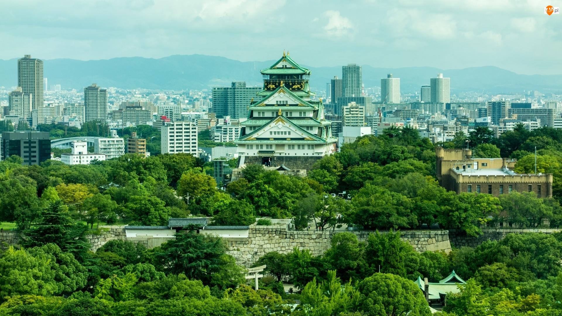 Drzewa, Zamek Osaka, Domy, Osaka, Osaka-jo, Mur, Japonia, Brokatowy zamek