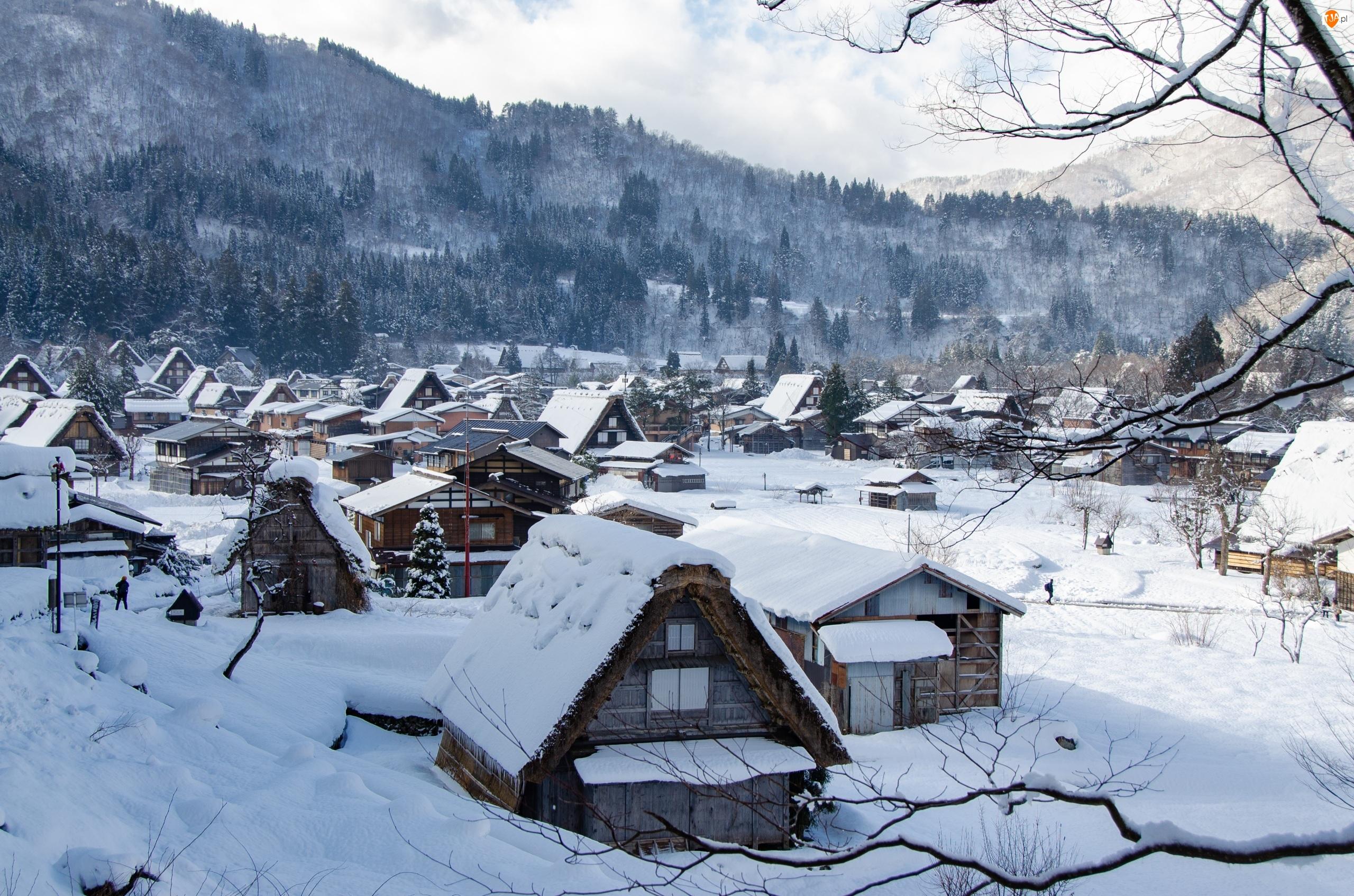 Japonia, Drewniane, Prefektura Gifu, Góry, Wieś Shirakawa, Domy, Śnieg, Zima, Drzewa